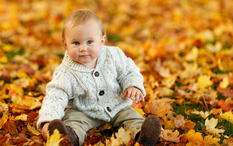 Cute Baby Boy Autumn Leaves Wallpaper Download High Resolution 4k Wallpaper