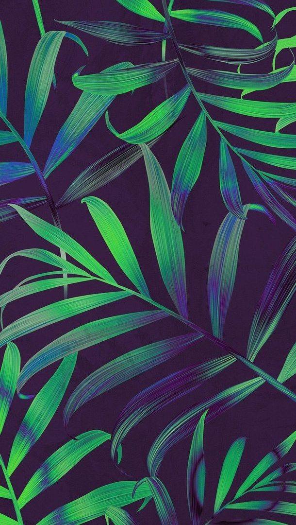 Cute Tumblr Wallpaper Uhd Mobile Wallpaper Download High Resolution 4k Wallpaper