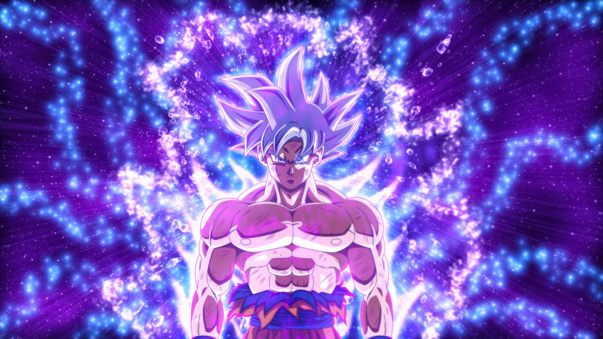 Dragon Ball Super Goku Ultra Instinct 4k Wallpaper Download High Resolution 4k Wallpaper