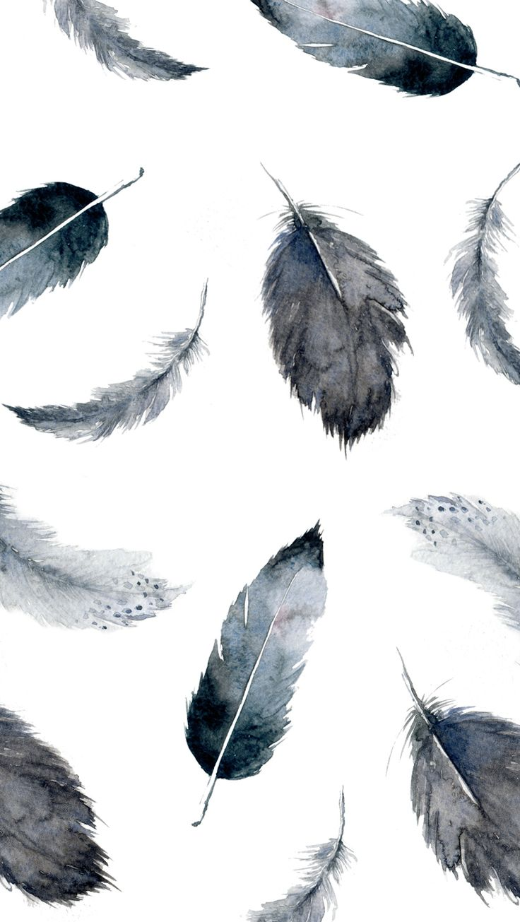 tumblr iphone wallpaper feather wallpapers for iphone feather iphone 13146