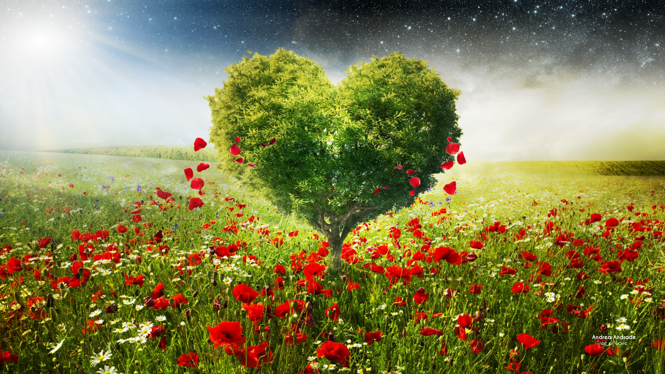 Green Love Heart Tree Poppies