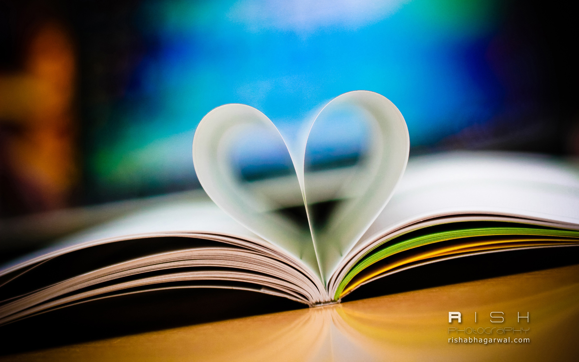 love book book, love, teddy wallpaper download - high resolution 4k