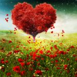 Valentines Day Love Heart Tree Landscape HD