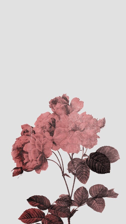 aesthetic background pink tumblr wallpaper