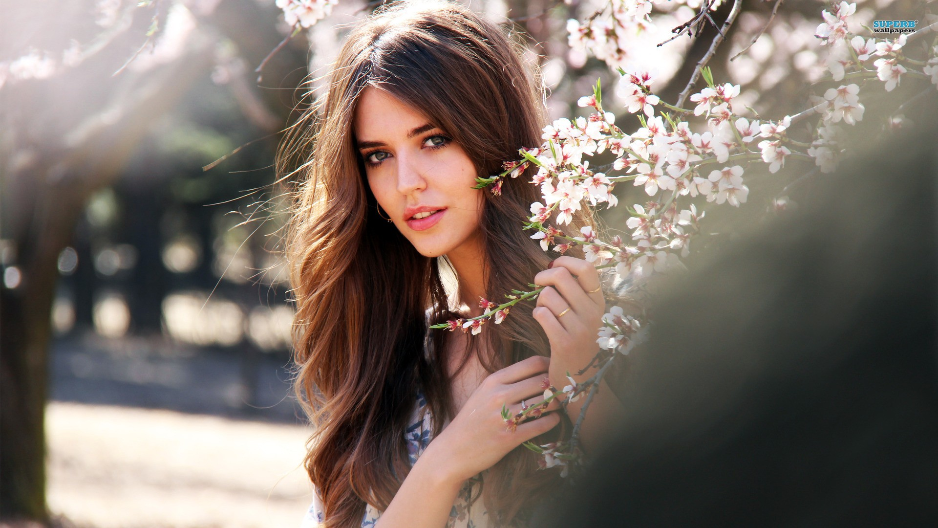 Awesome Beautiful Girls Hd Full Pics