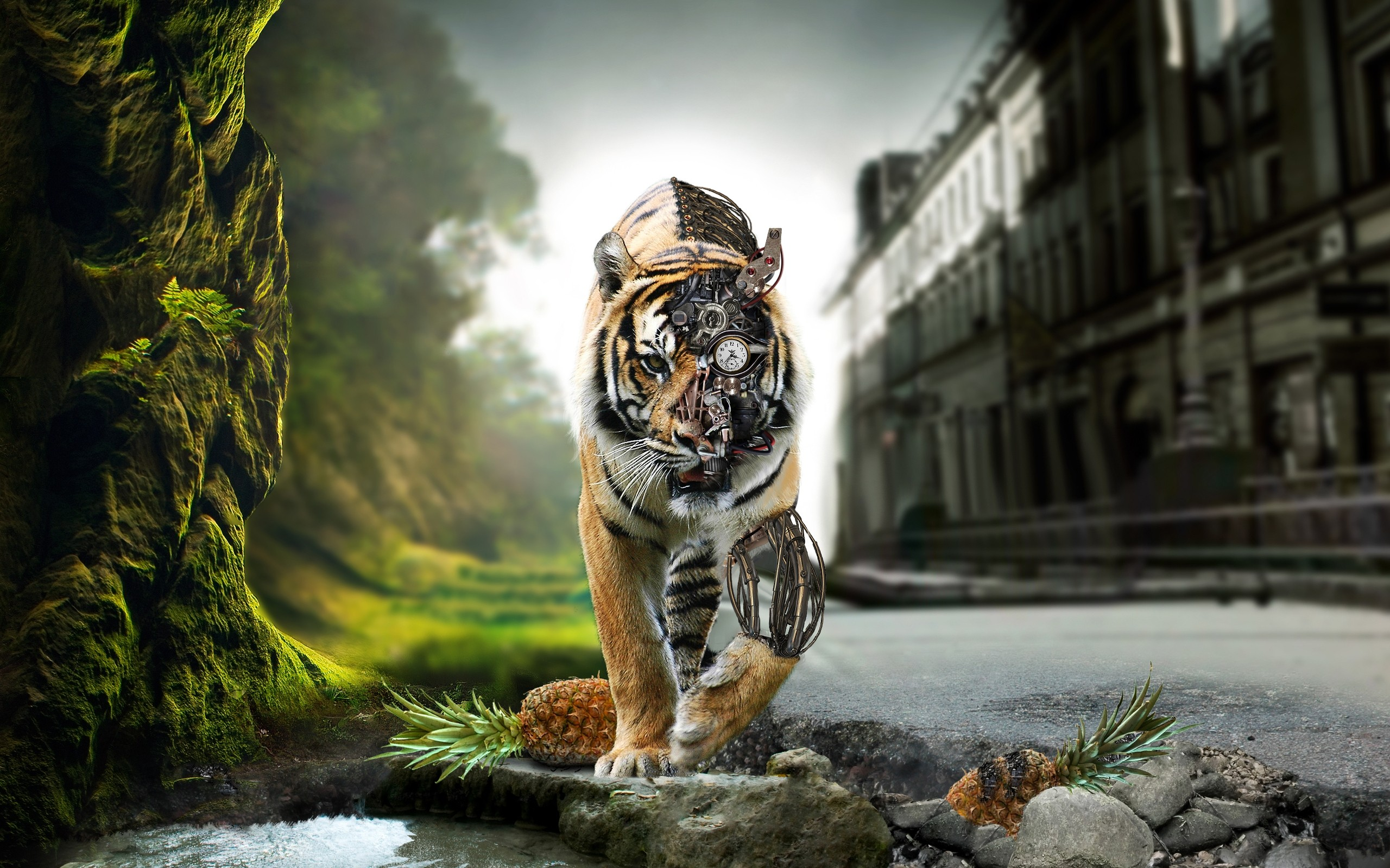 Awesome Tiger Best Images