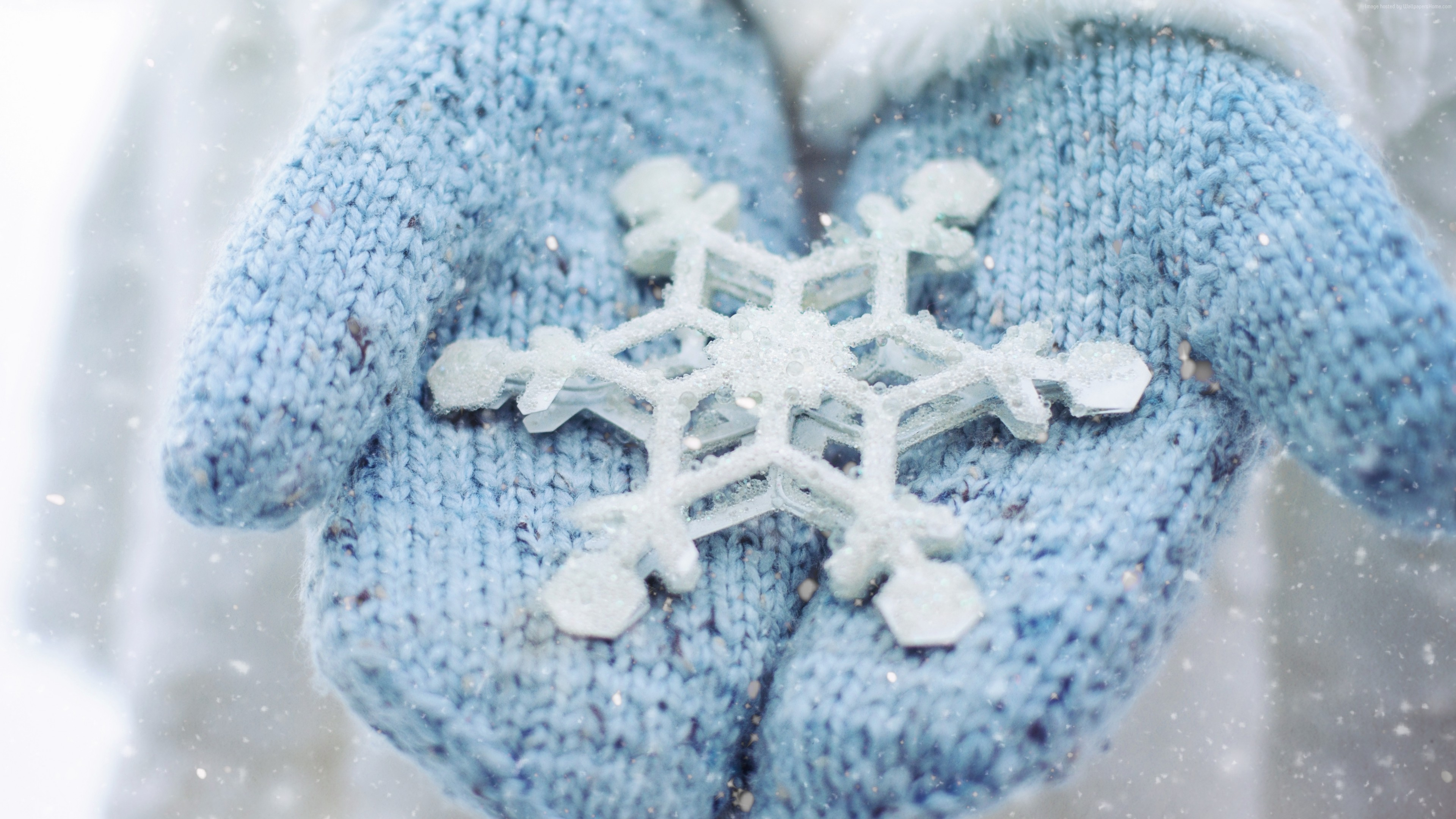 Stock Images hand, snowflake, winter, 5k, Stock Images