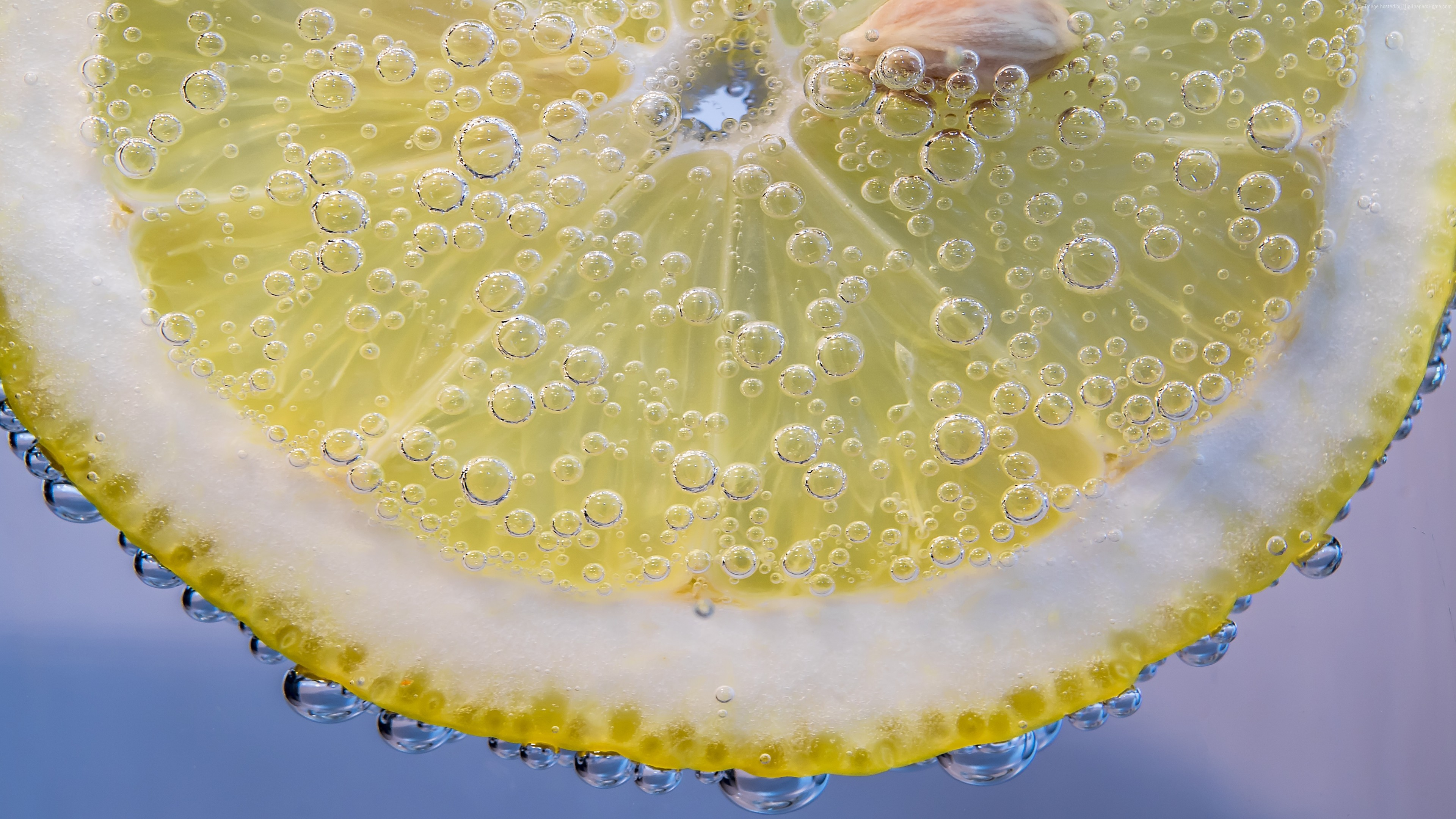 Stock Images lemon, under water, 5k, Stock Images