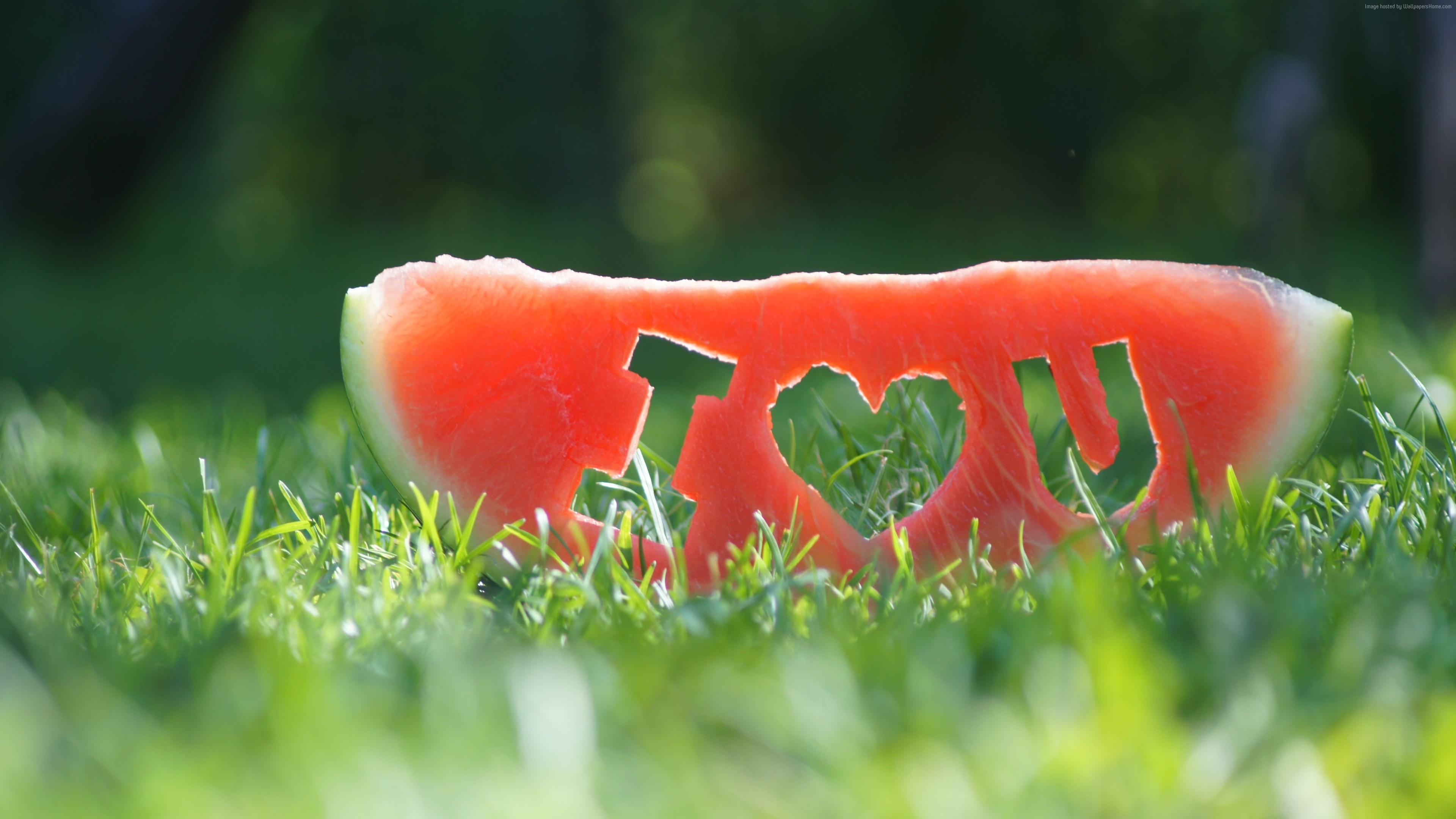 Stock Images love image, watermelon, grass, 4k, Stock Images