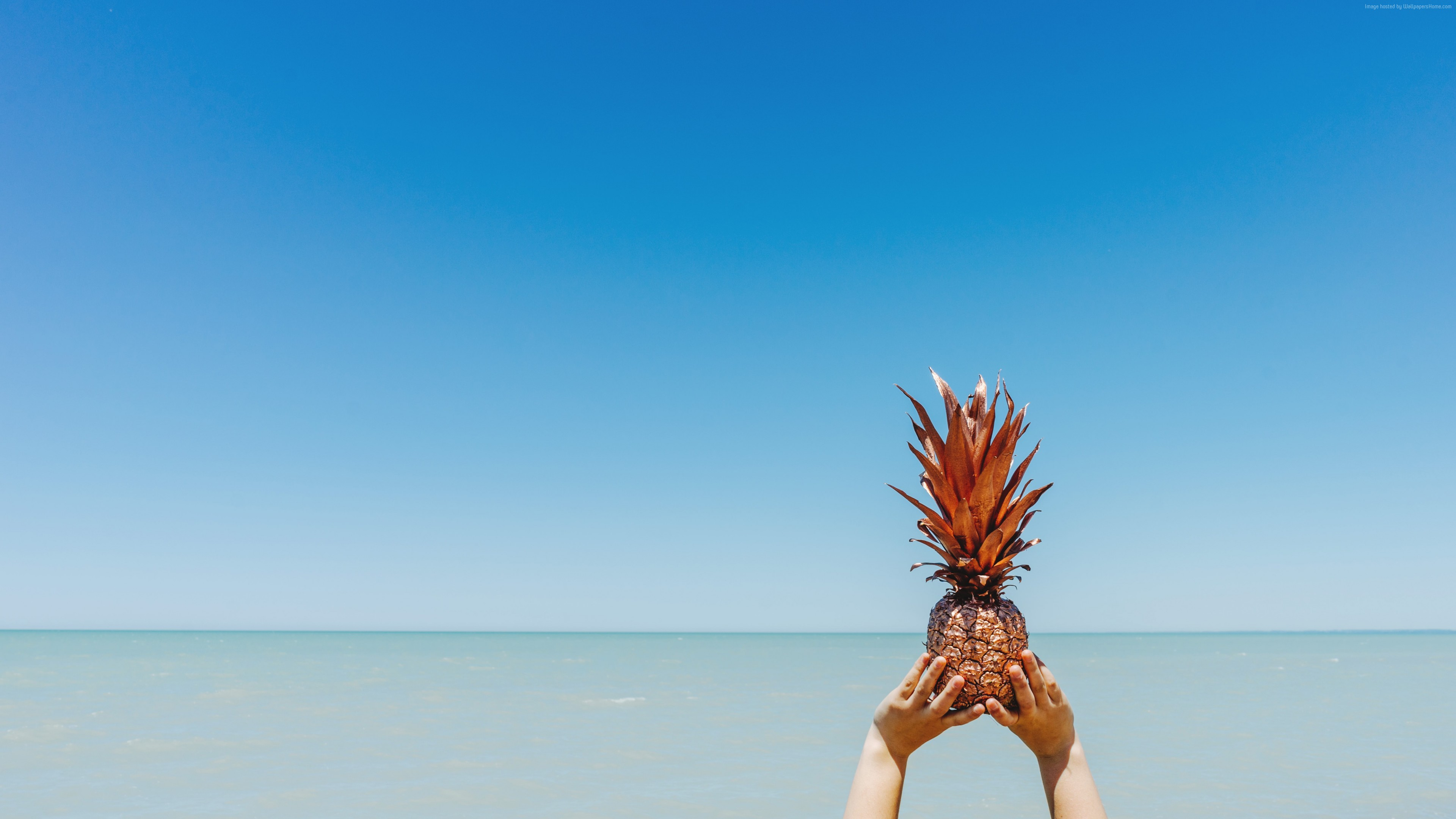 Stock Images pineapple, sky, ocean, 5k, Stock Images