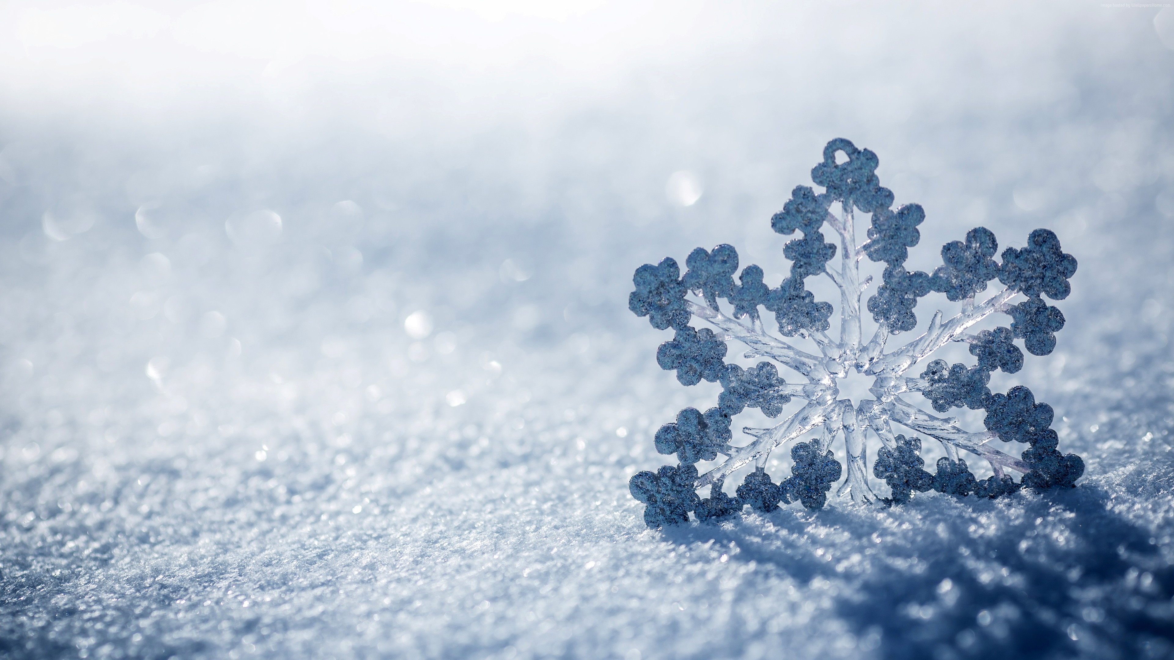 Stock Images snow, winter, snowflake, 4k, Stock Images