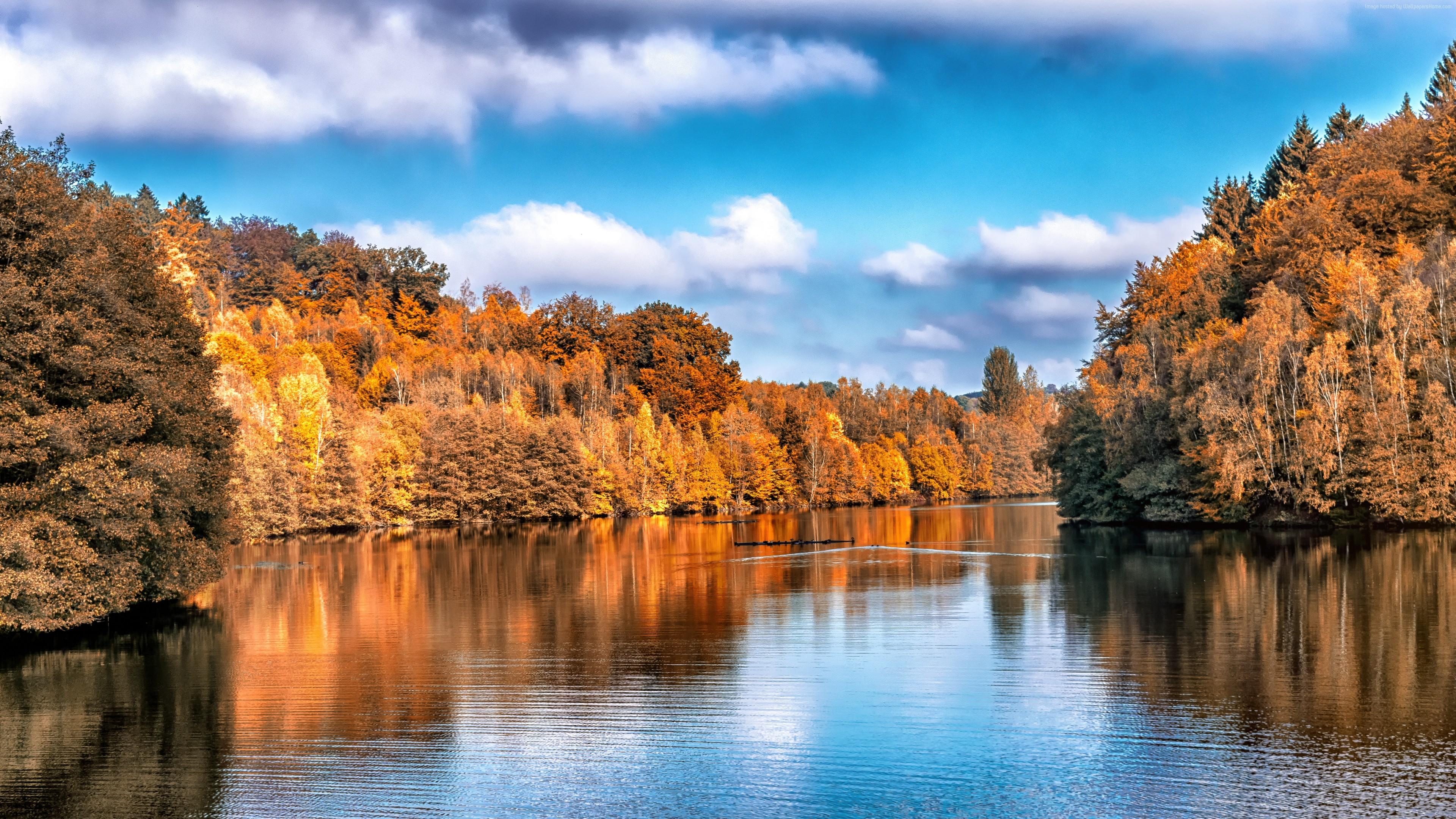 Wallpaper Autumn, lake, forest, 5k, Nature