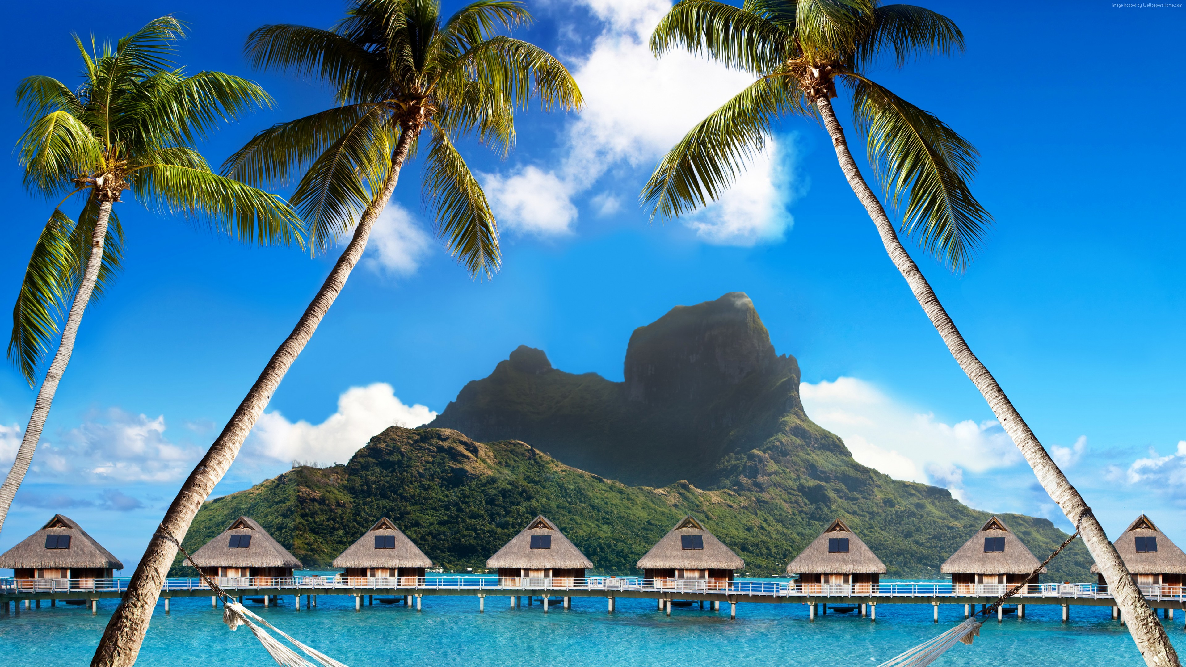 Wallpaper Bora Bora, 5k, 4k wallpaper, French Polynesia, Best beaches of 2017, Best Hotels of 2017, ocean, palm trees, mountains, beach, vacation, rest, travel, booking, palm trees, hammock, Travel
