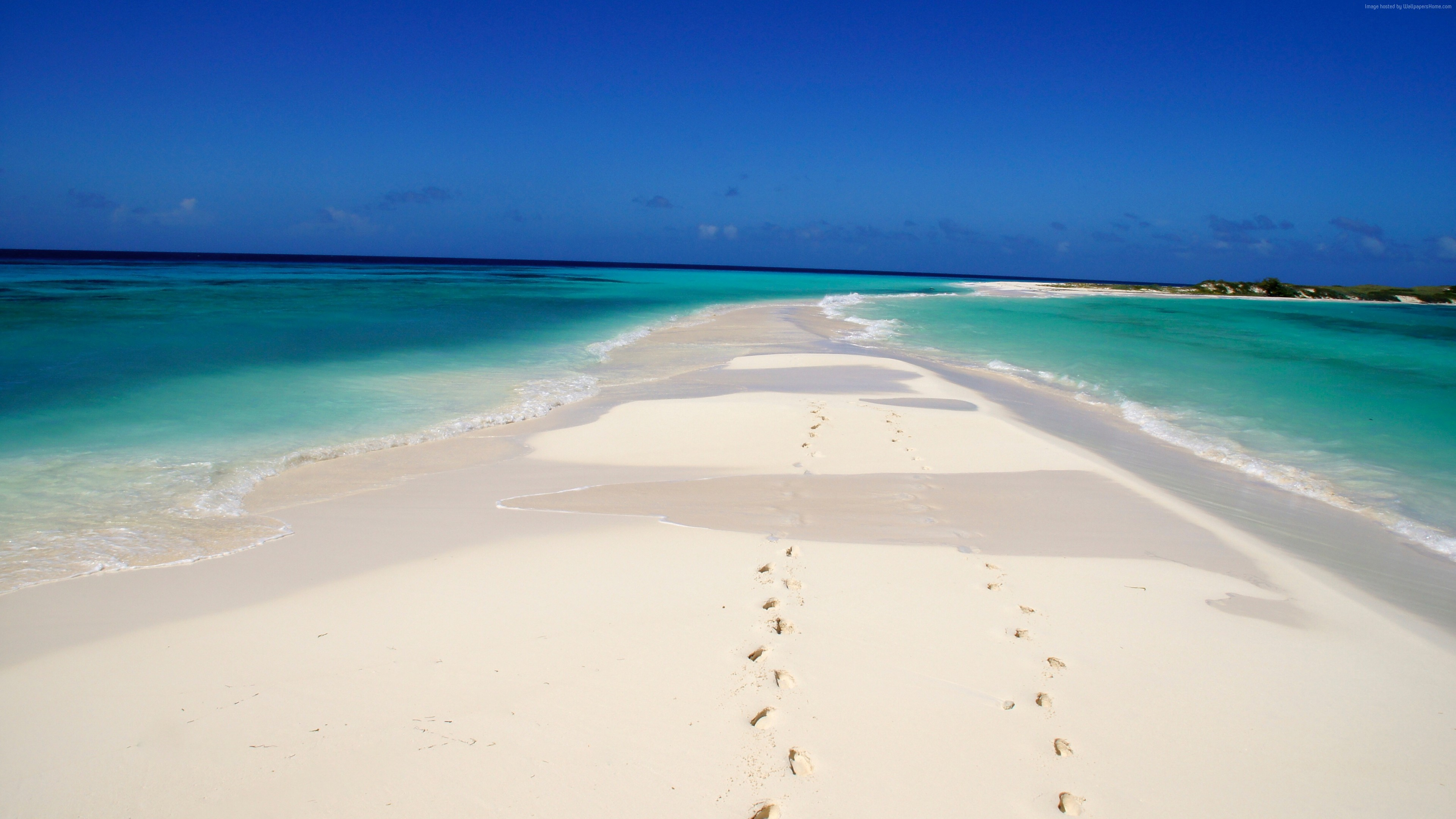 Wallpaper Cayo de Agua, Los Roques National Park, Venezuela, Best beaches of 2016, Travellers Choice Awards 2016, Travel