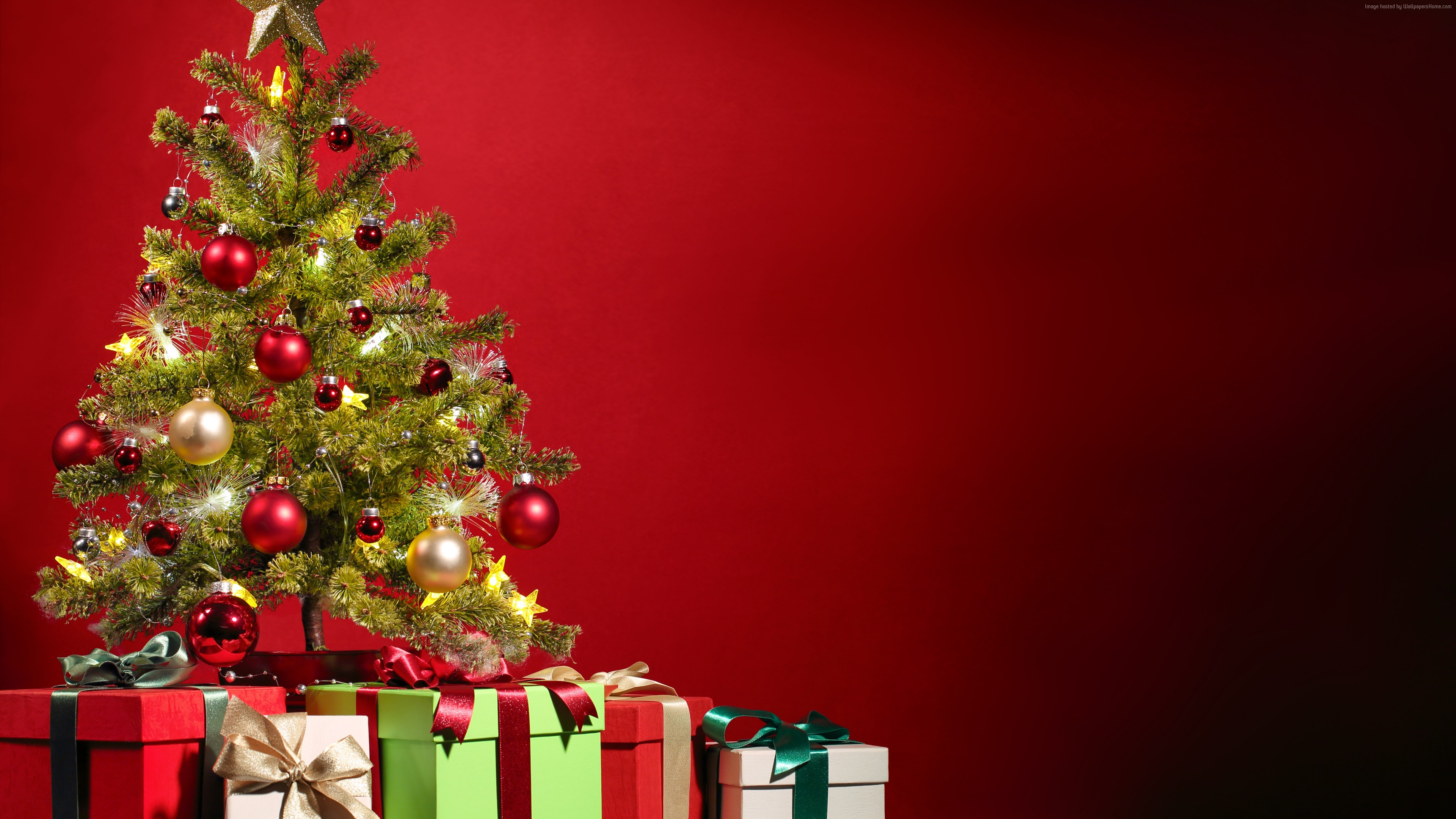 Wallpaper Christmas, New Year, gifts, fir-tree, red, 5k, Holidays