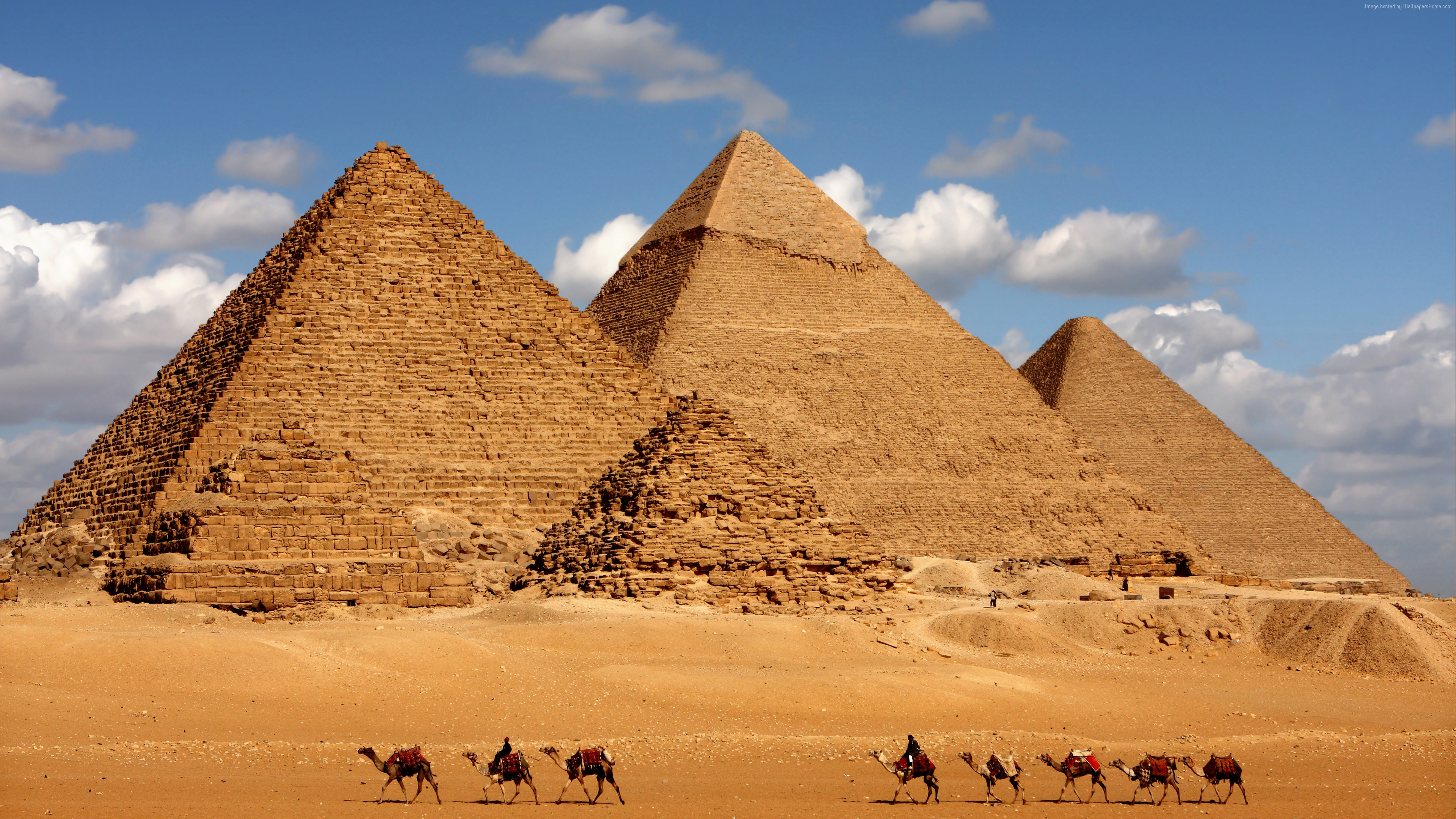 Wallpaper Egypt, pyramid, camel, 8k, Travel
