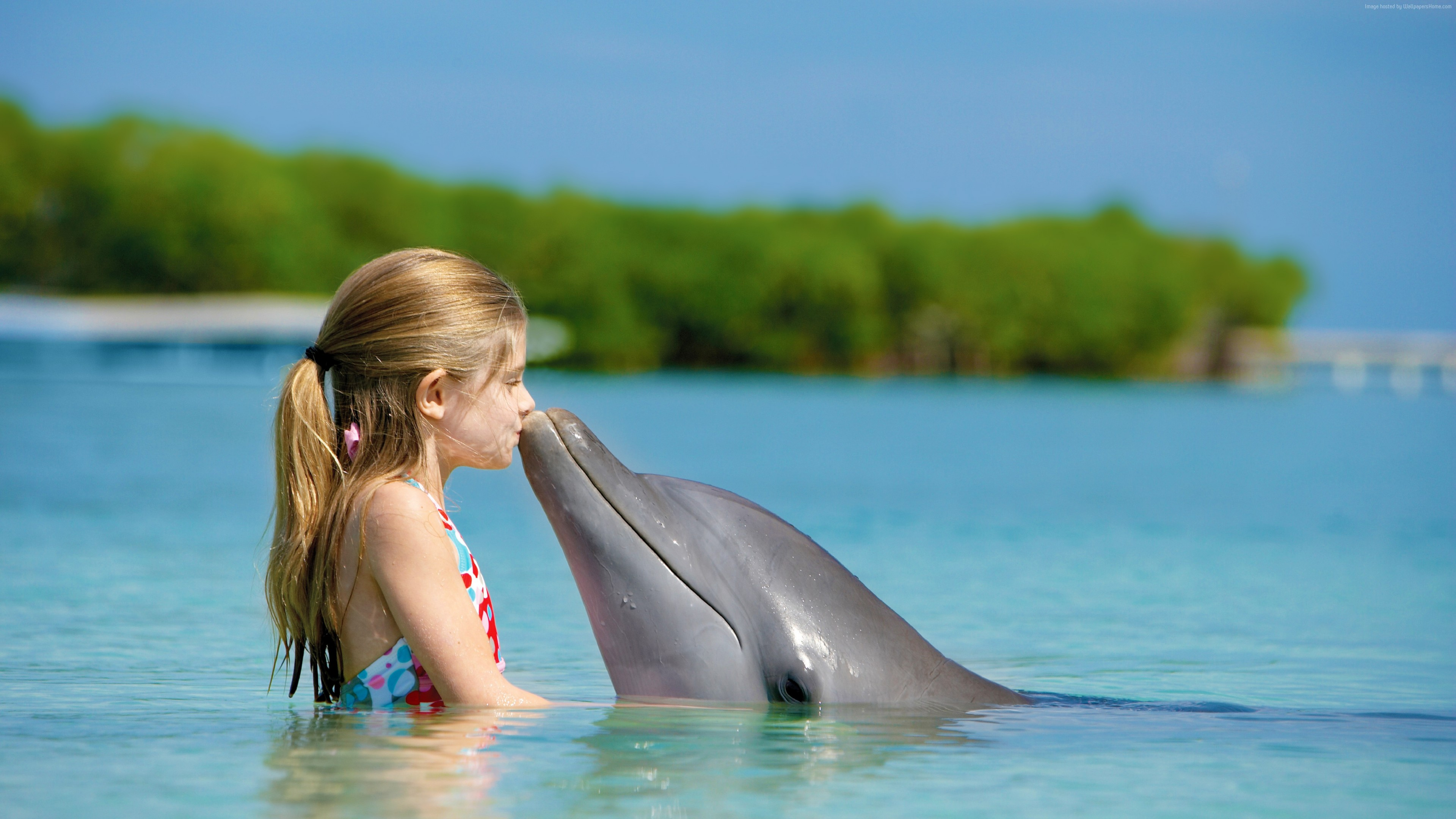 Wallpaper Girl and dolphin, ocean, Maldives, Travel