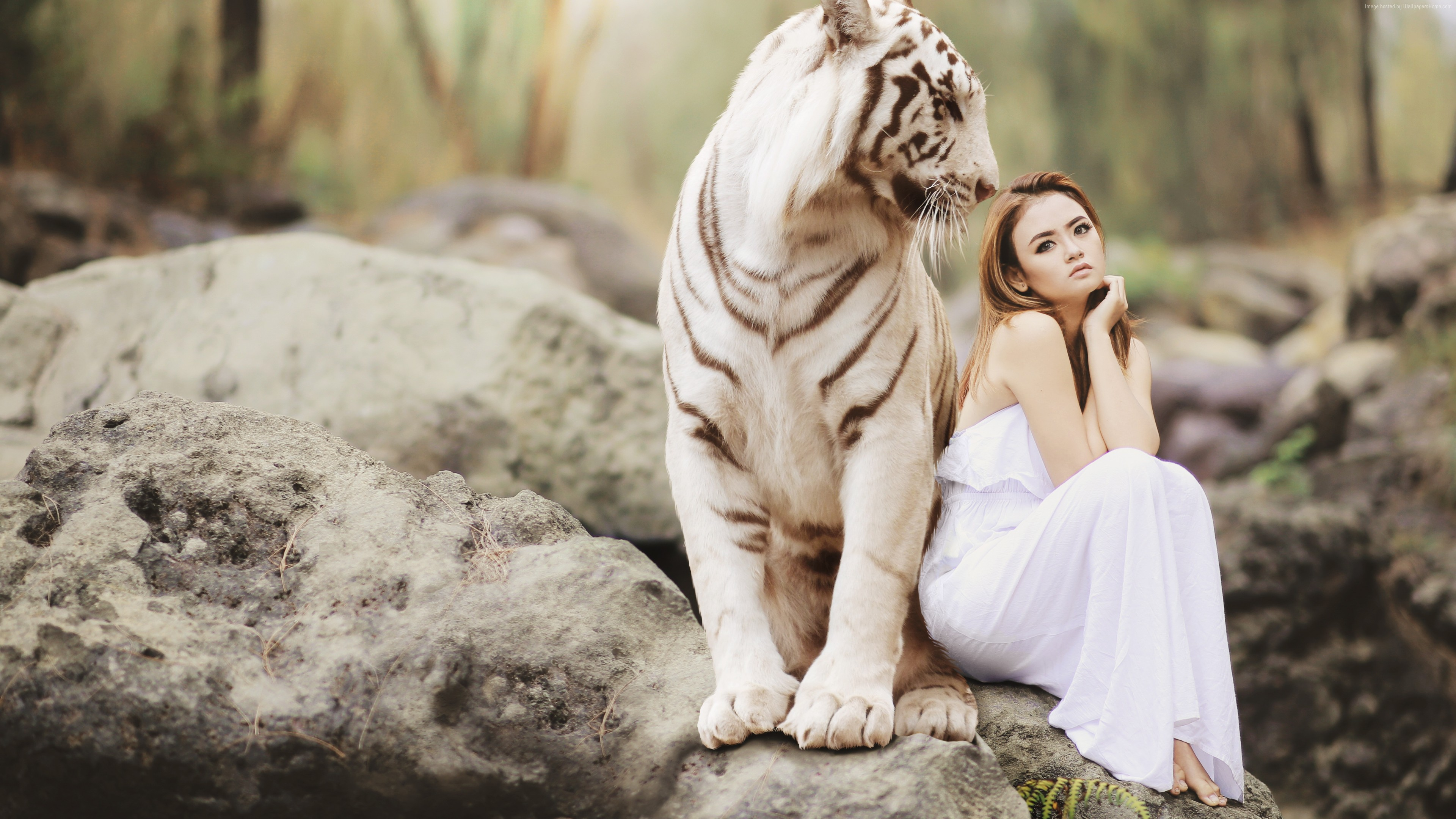 Wallpaper Girl, White Tiger, 5K, Girls