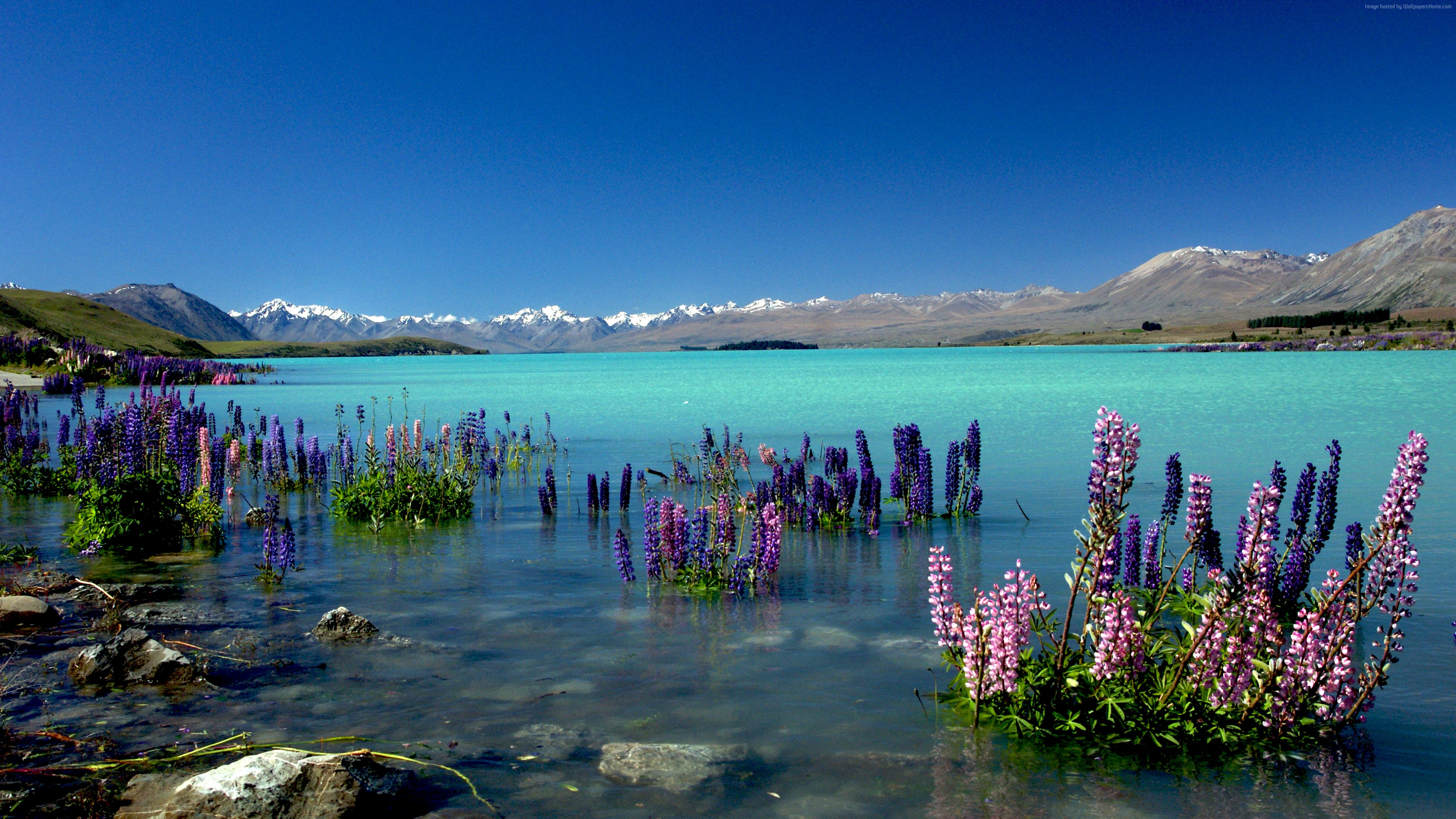 Wallpaper Lake Tekapo, New Zealand, mountains, 4k, Travel
