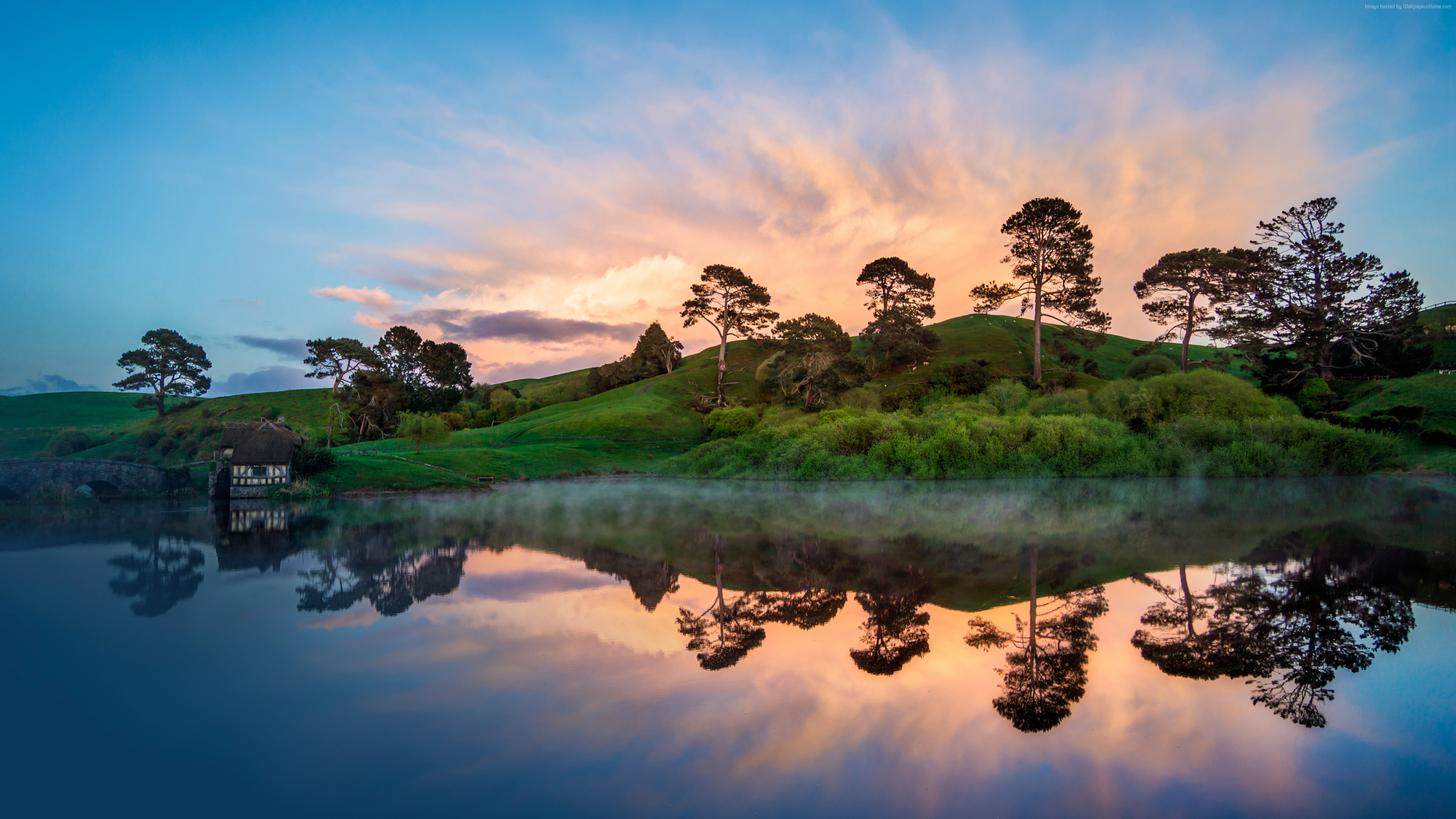 Wallpaper New Zealand, river, trees, 5k, Nature