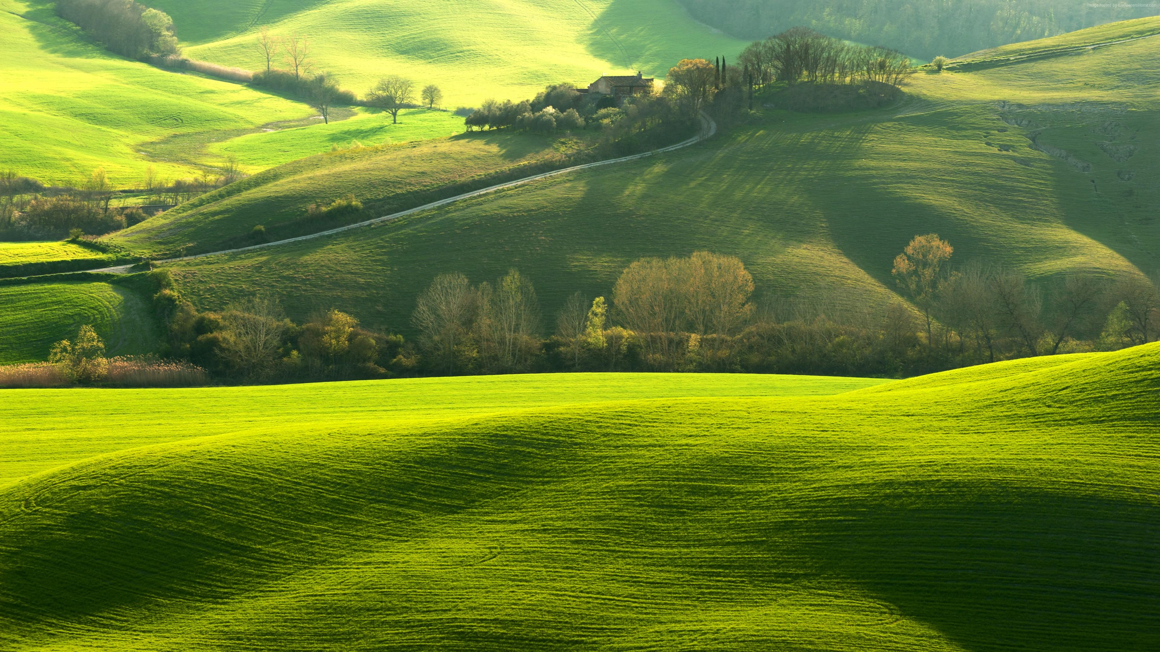 Wallpaper tuscany italy europe hills green field 8k - Nature wallpaper 8k ...
