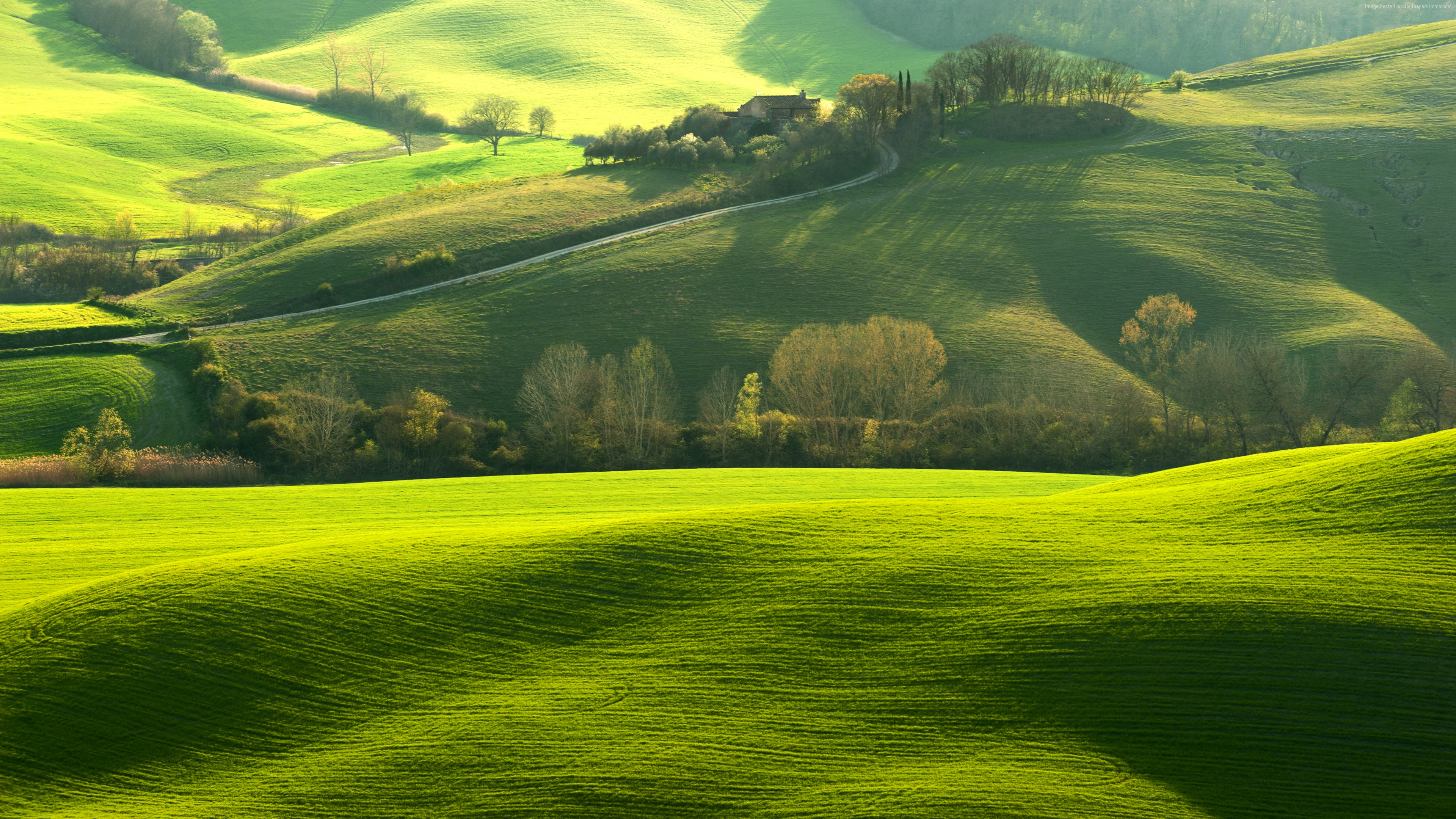 Wallpaper Tuscany, Italy, Europe, hills, green, field, 8k, Travel