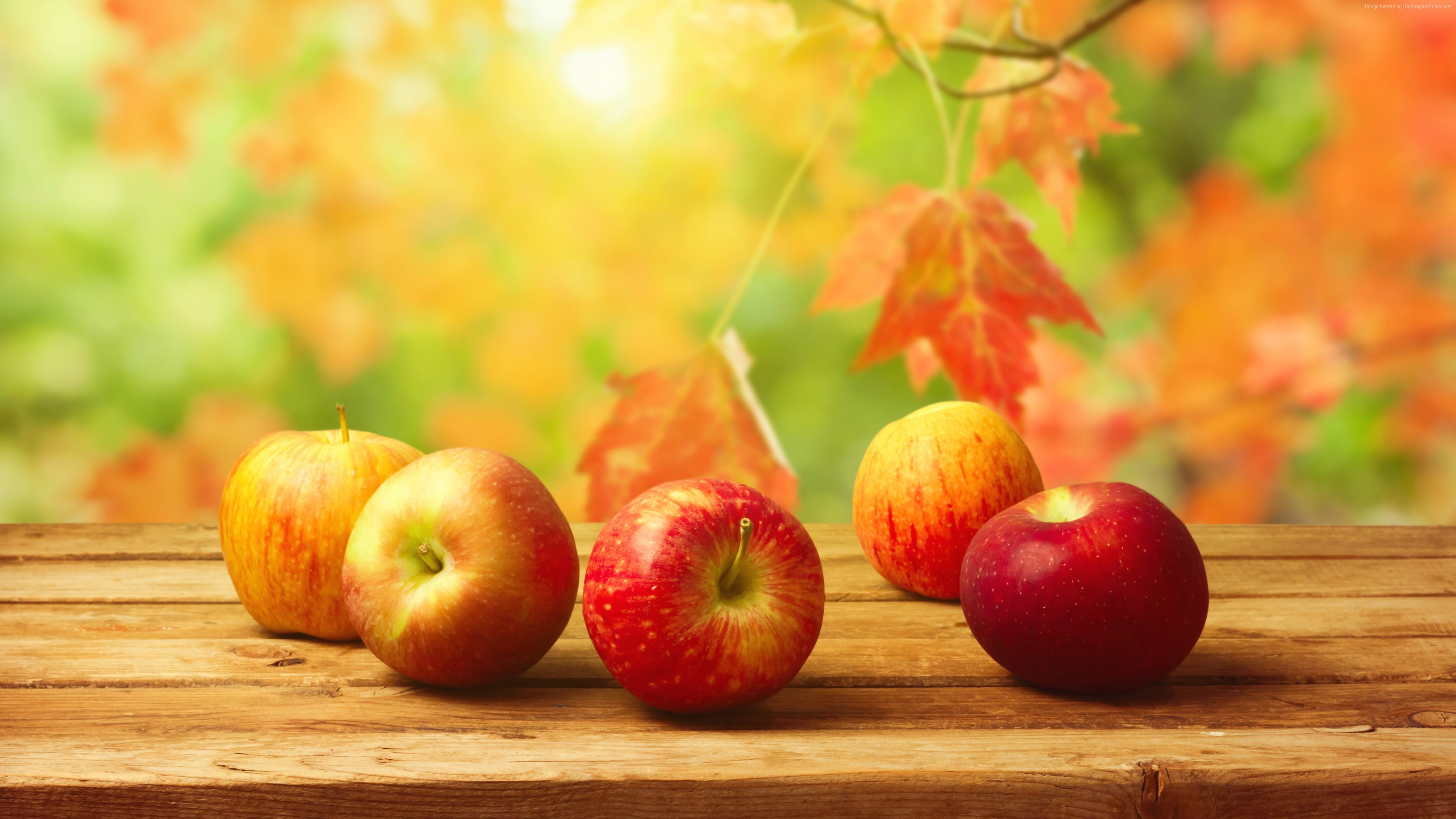 Wallpaper apple, fruit, autumn, 4k, Food