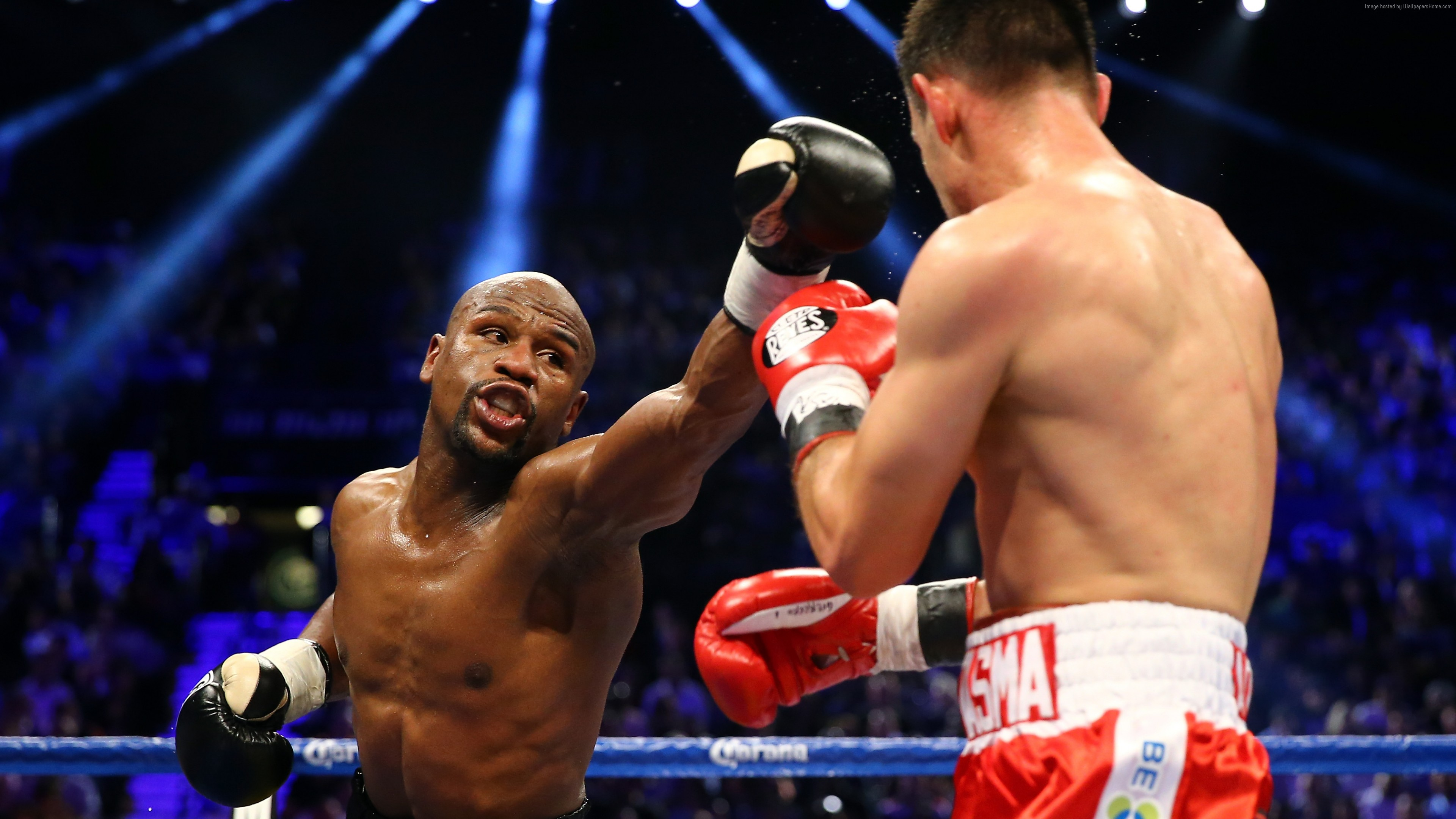 Wallpaper boxing, Floyd Mayweather, American boxer, ring, light, Sport