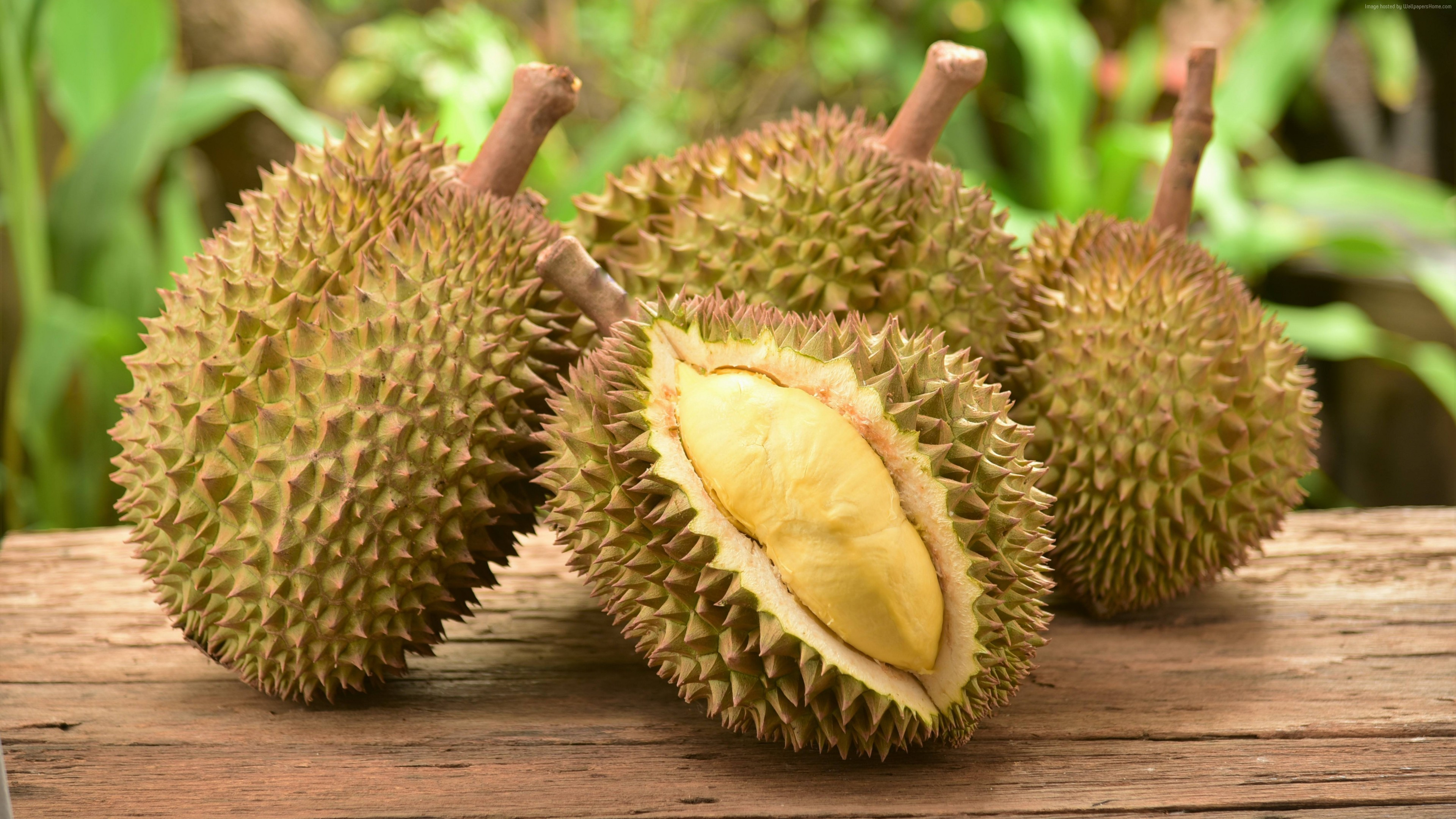Wallpaper durian, fruit, 5k, Food