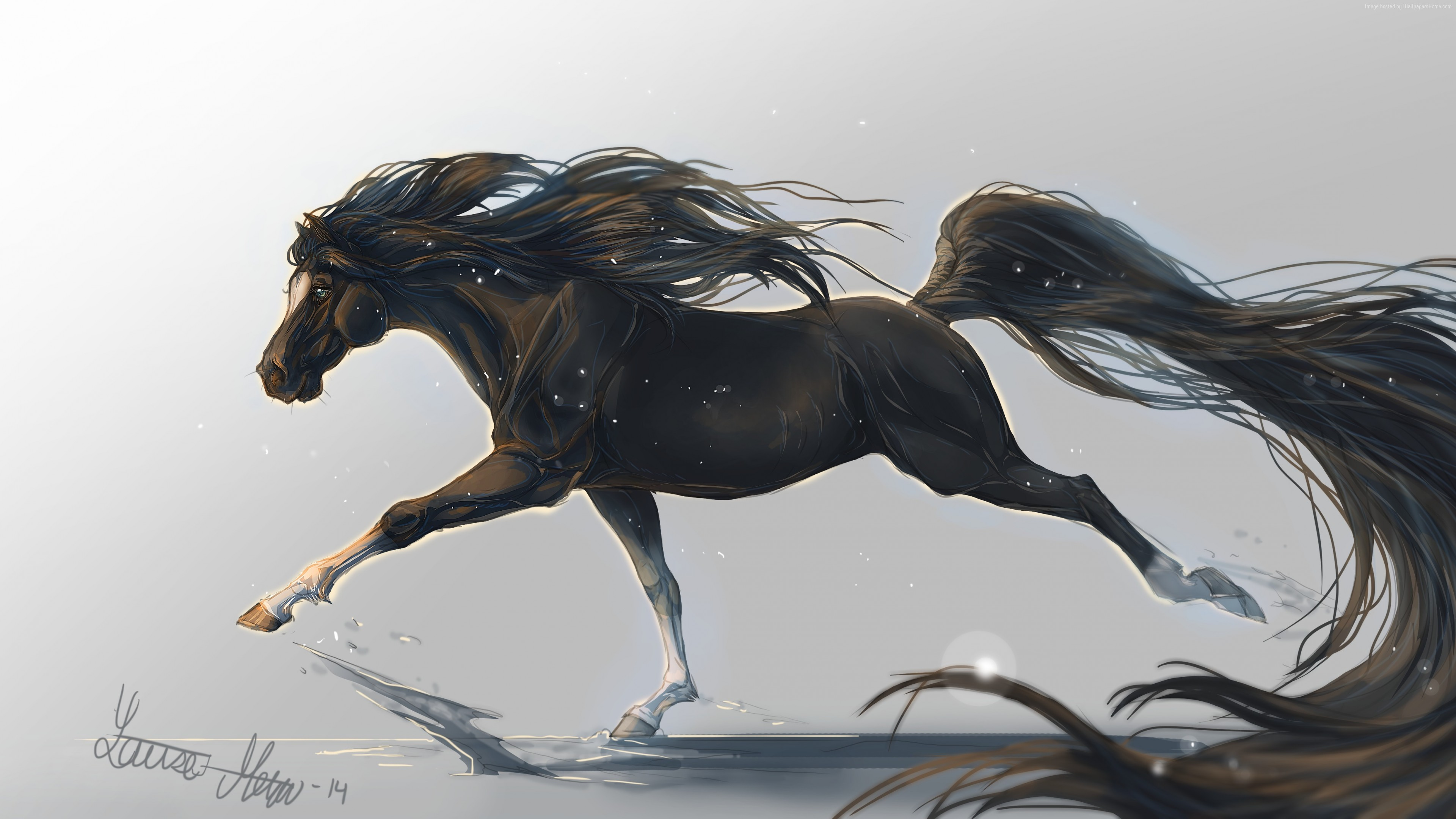 Wallpaper horse, hooves, 5k, 4k wallpaper, mane, galloping, black, white background, art, , Animals