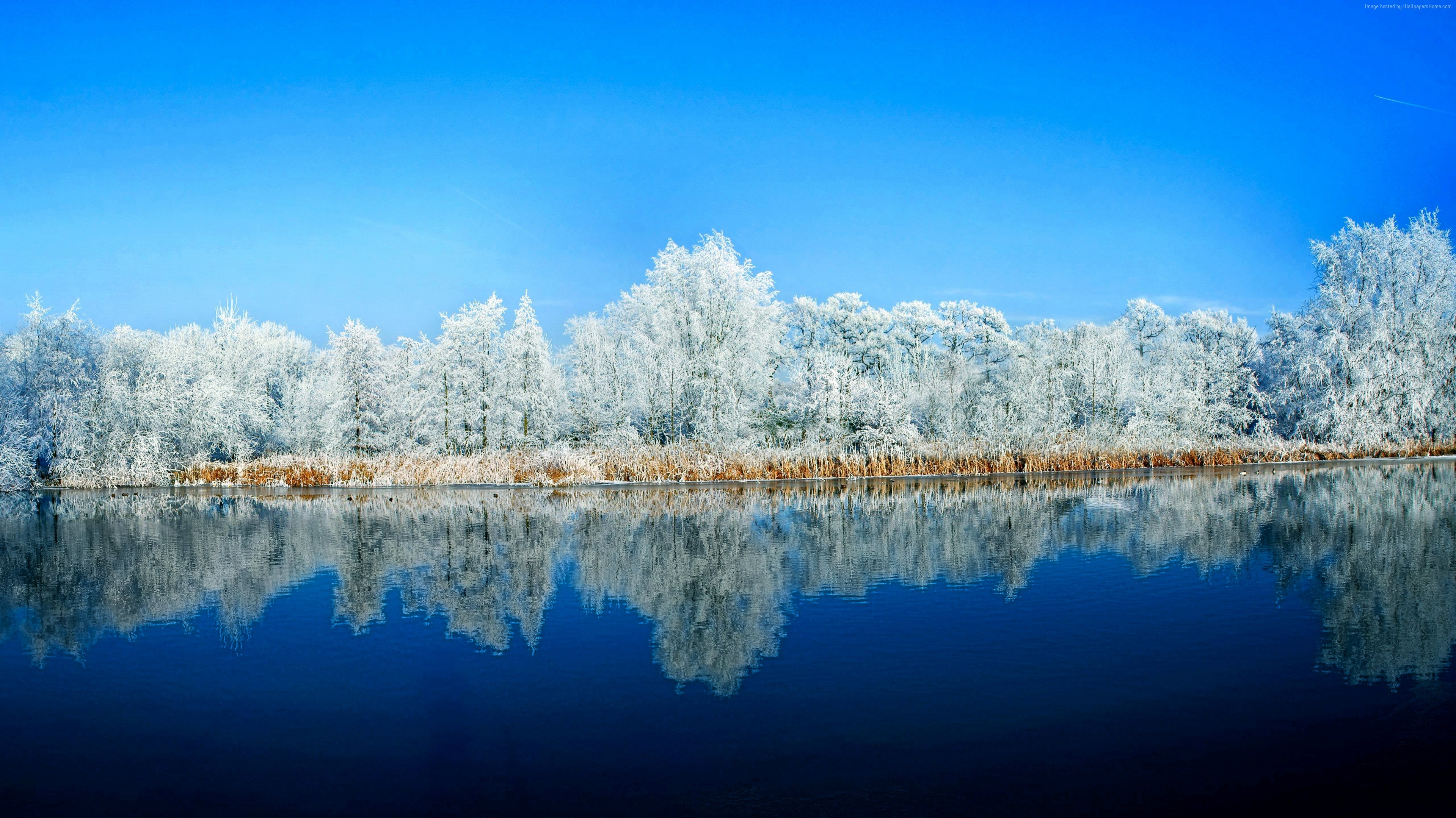 Wallpaper lake, forest, snow, winter, 5k, Nature