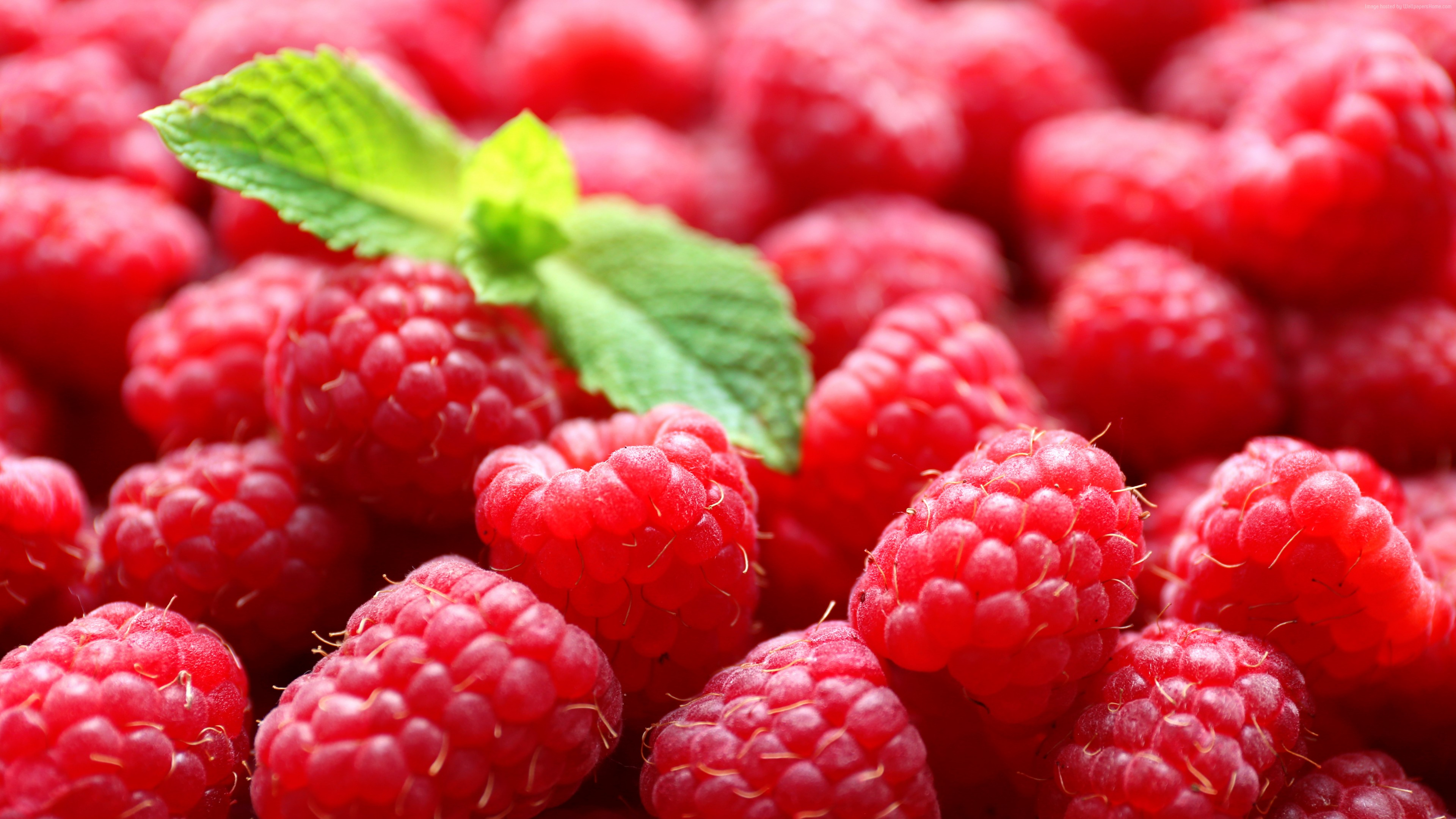 Wallpaper raspberries, delicious, 5k, Food