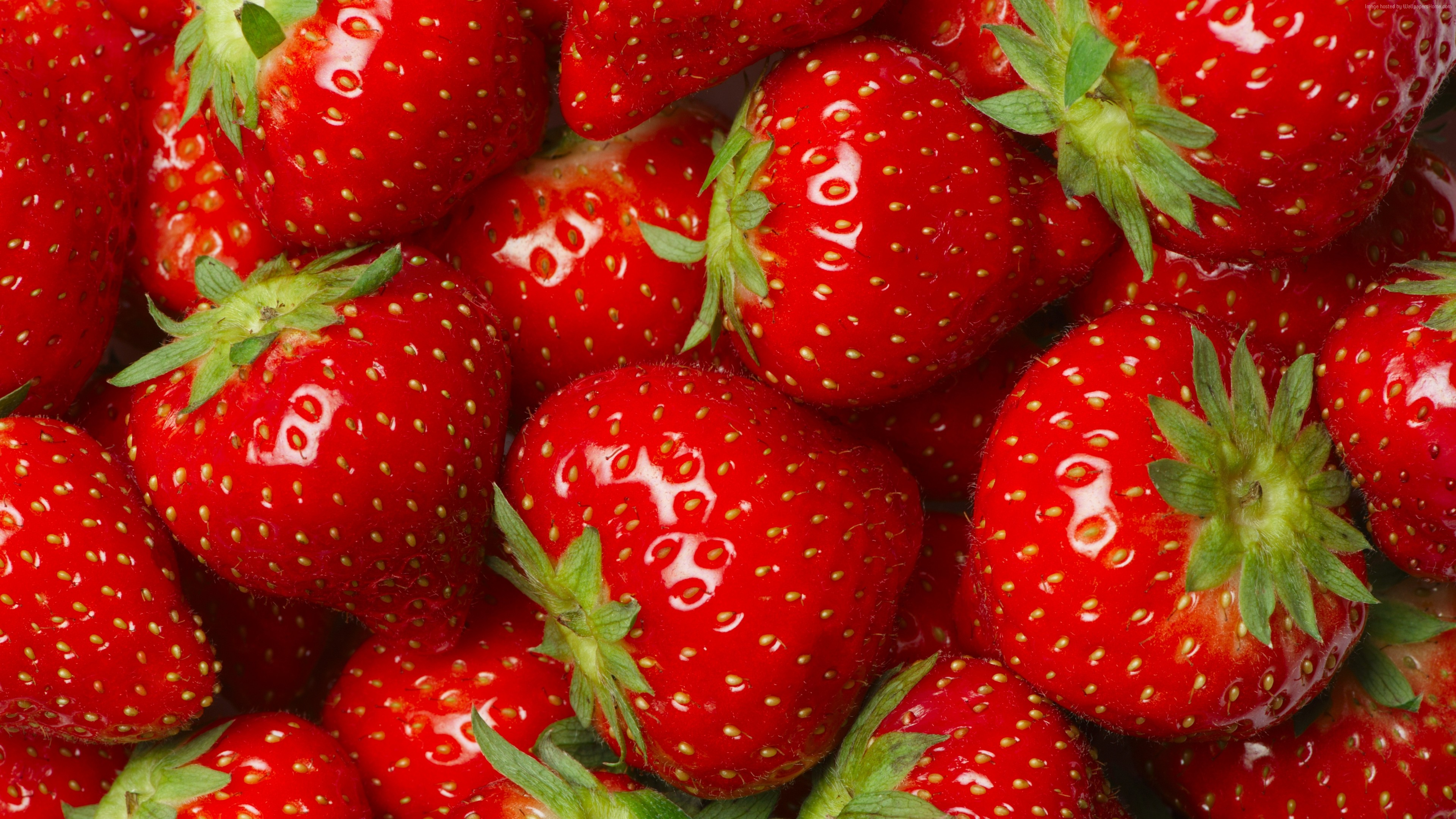 Wallpaper strawberry, 8k, Food