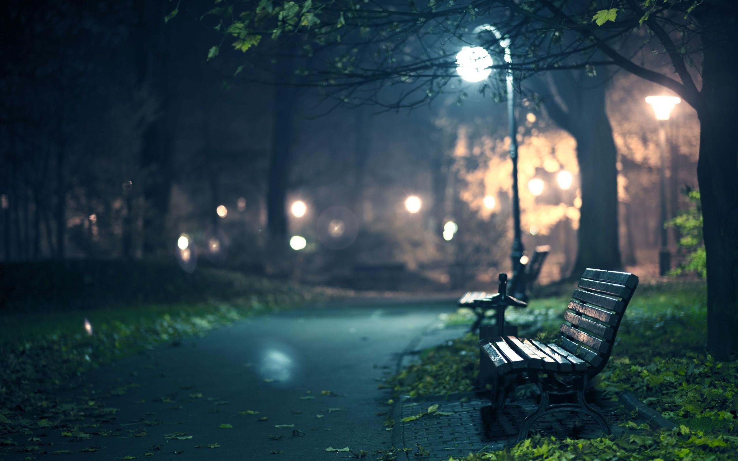Park Bench At Night Desktop