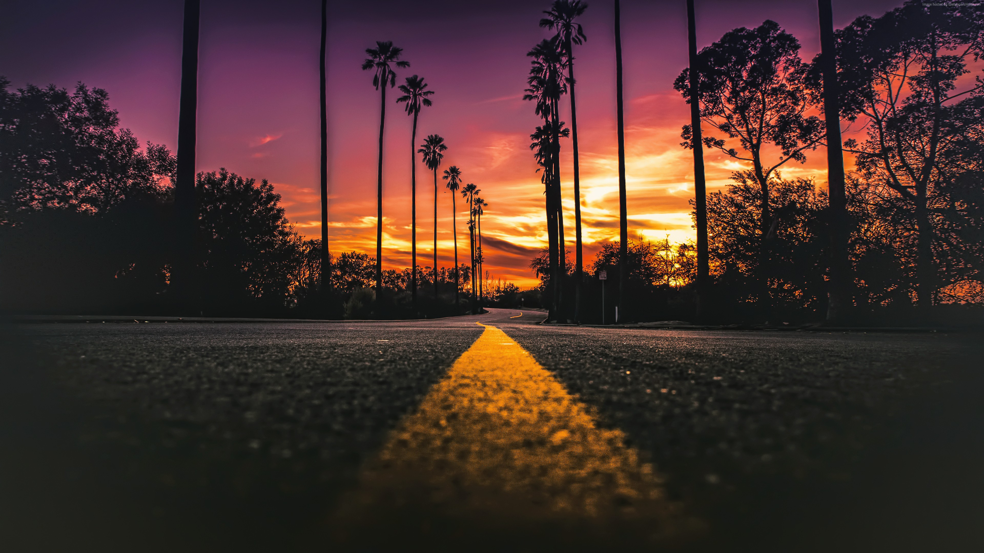 Stock Images Los Angeles, California, road, palms, sunset, 4K, Stock Images