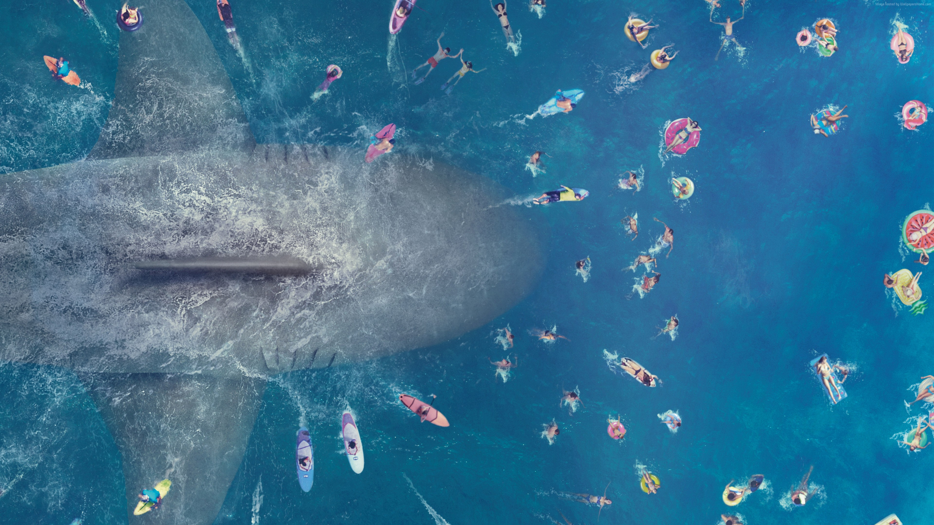 Wallpaper The Meg, poster, 8K, Movies