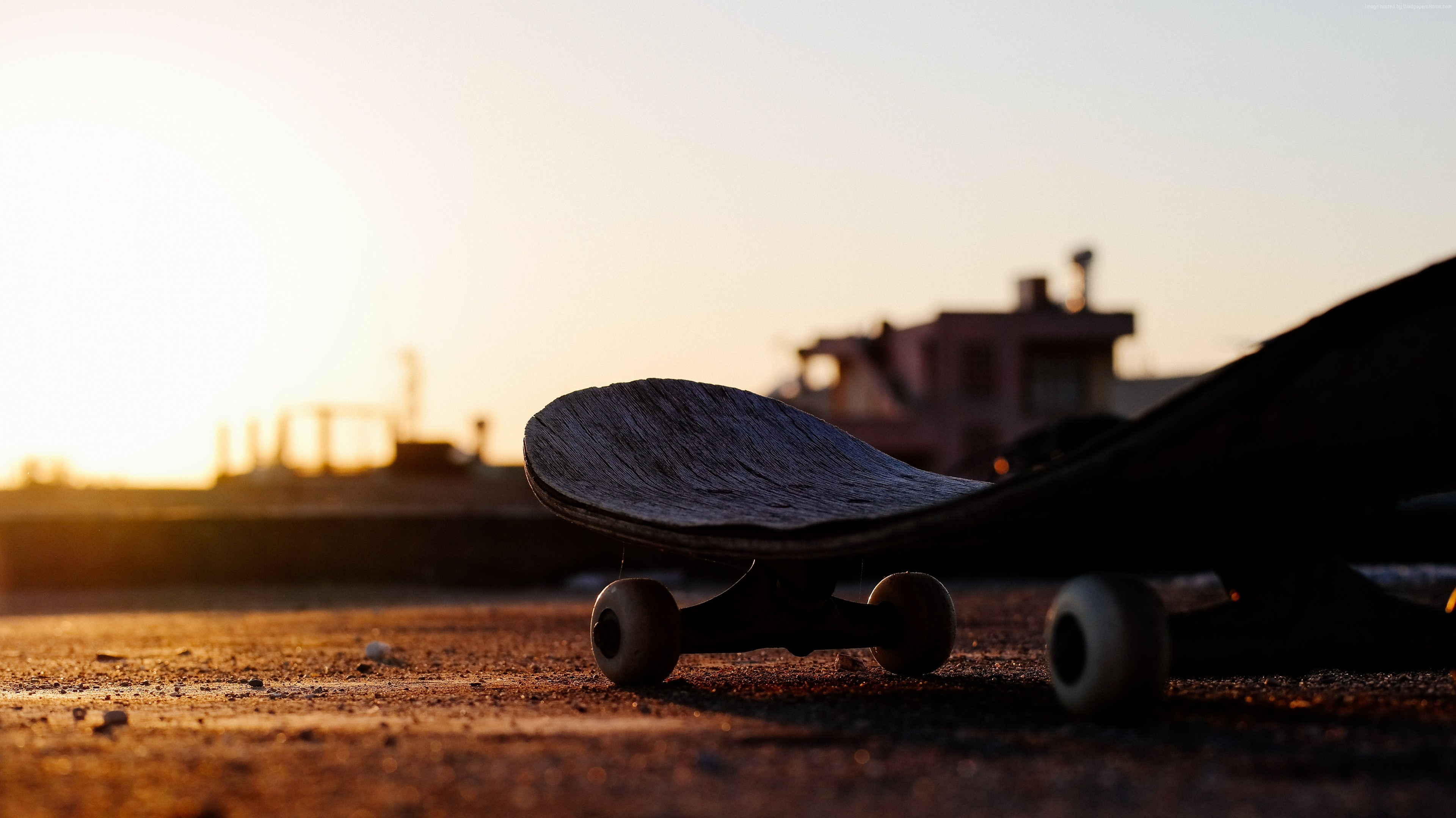 Wallpaper skateboarding, sunset, 5K, Sport