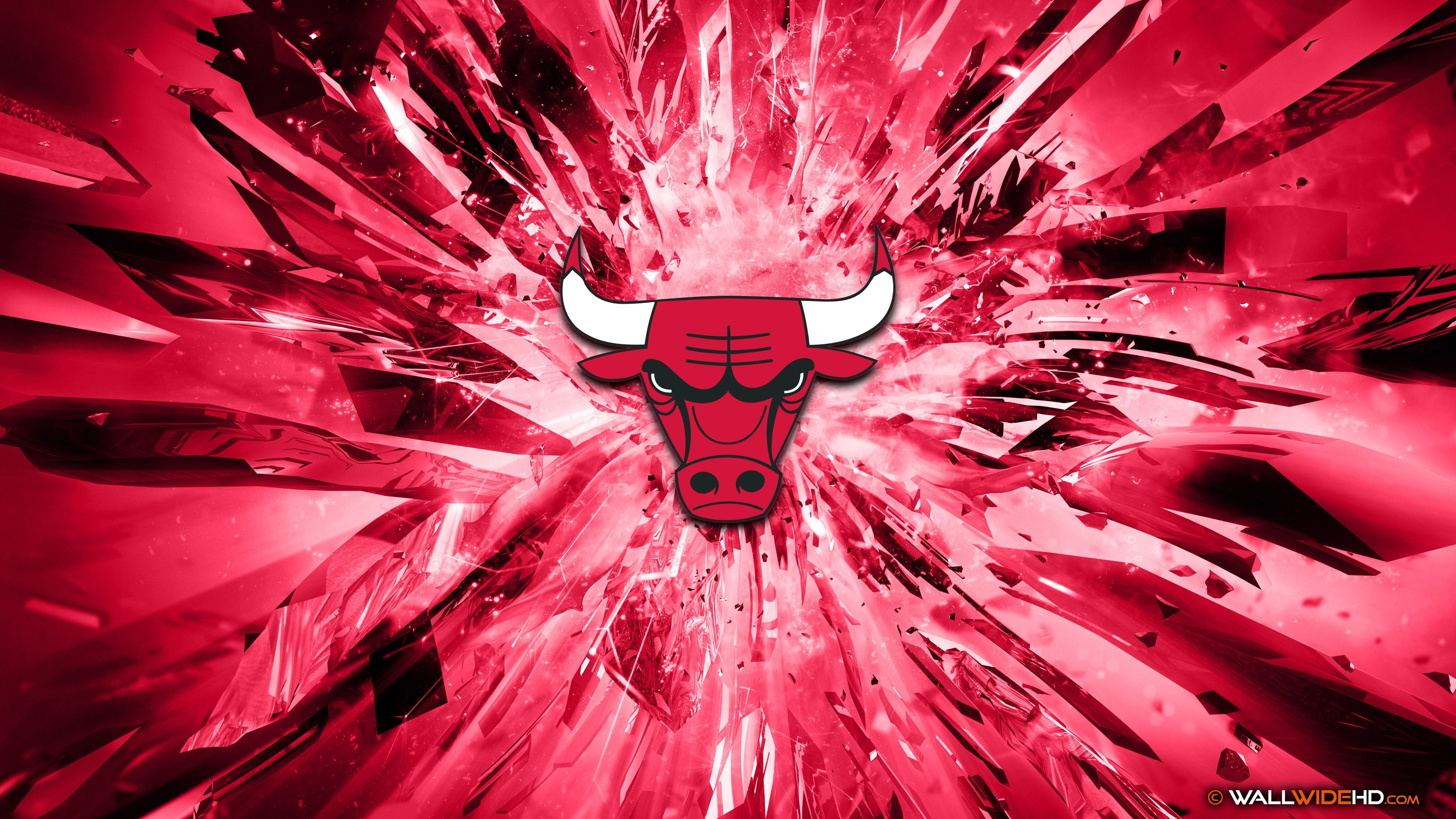 4K Chicago Bulls Photos