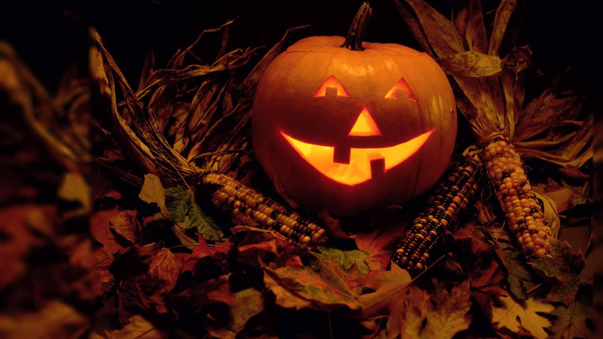 Laughing Pumpkin On Halloween Wallpaper