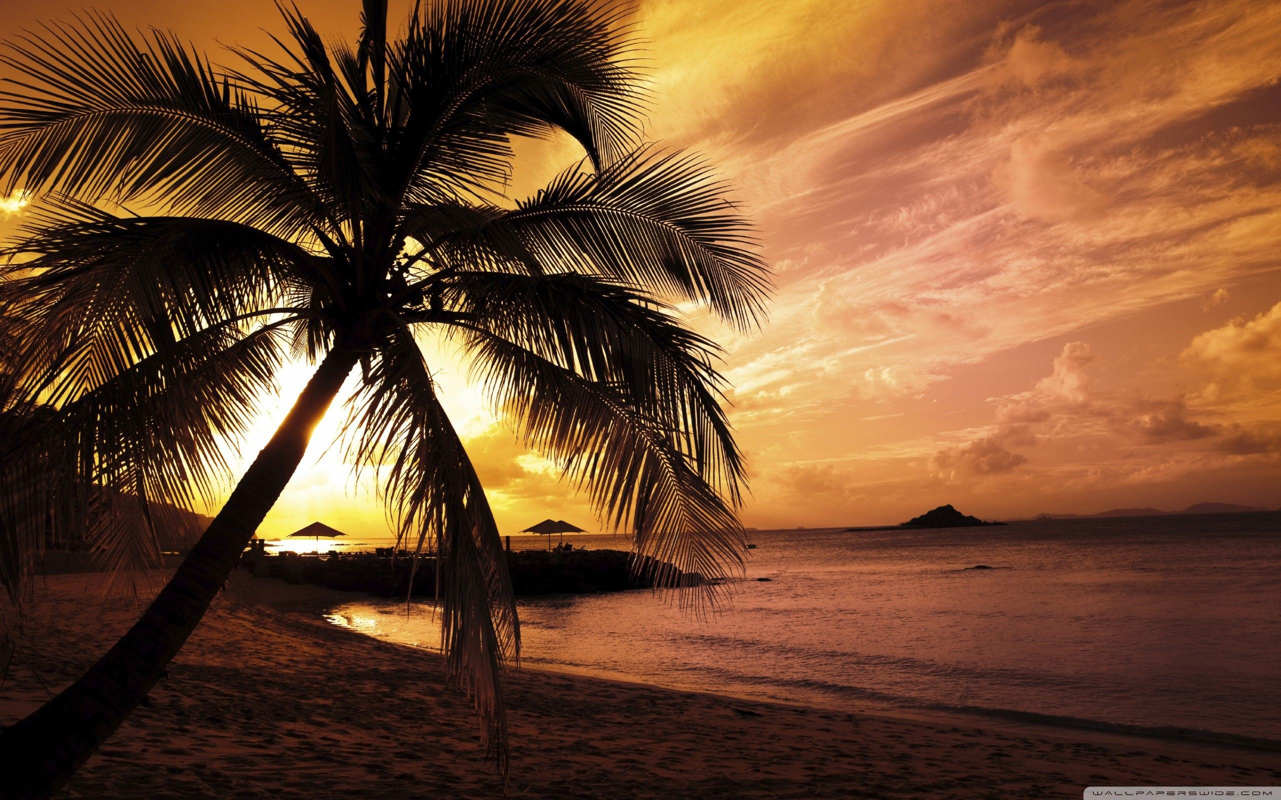 Beach Sunset Free Wallpaper