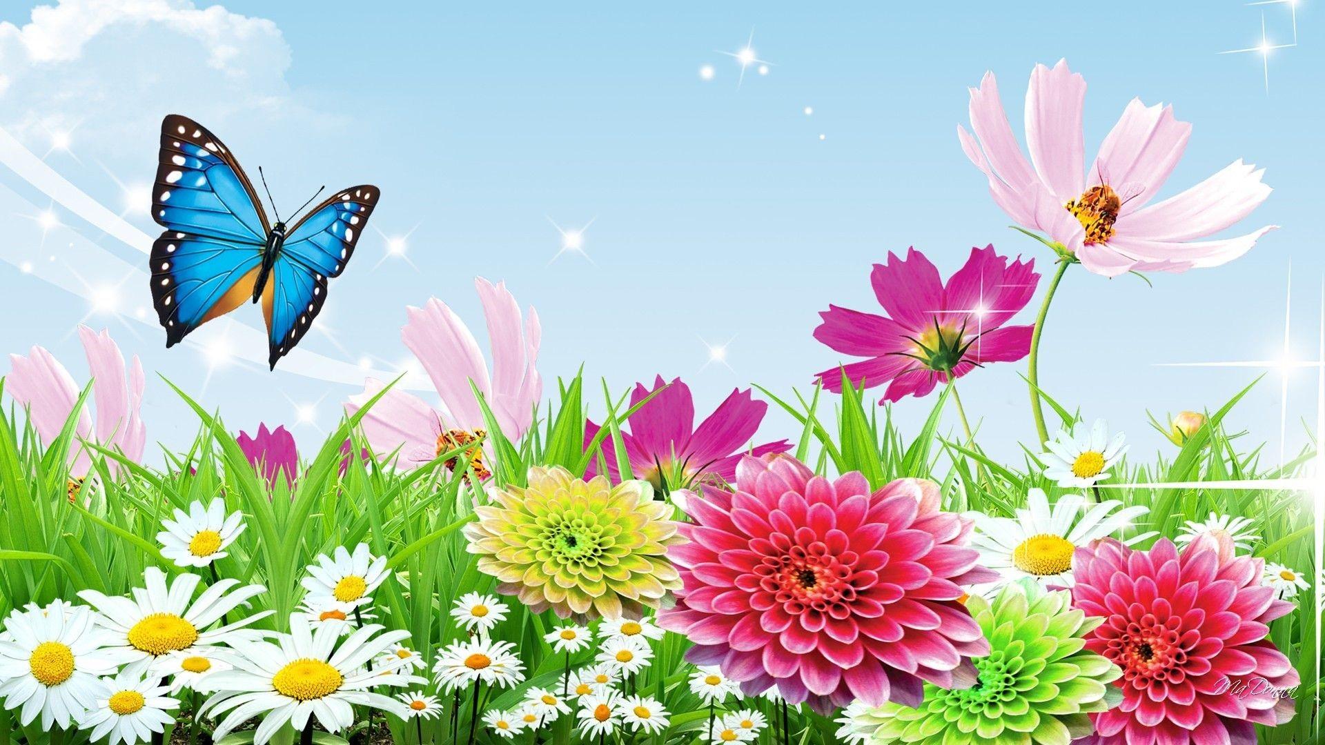 Butterfly Garden 1080p Wallpapers