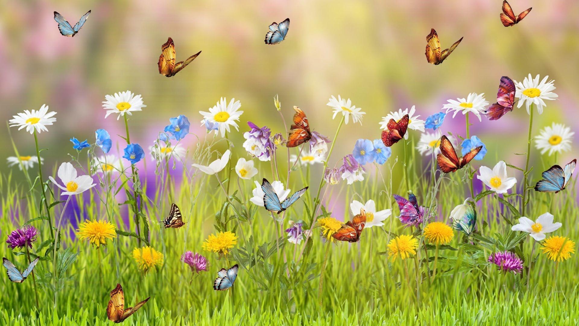 Butterfly Garden Phone Wallpapers