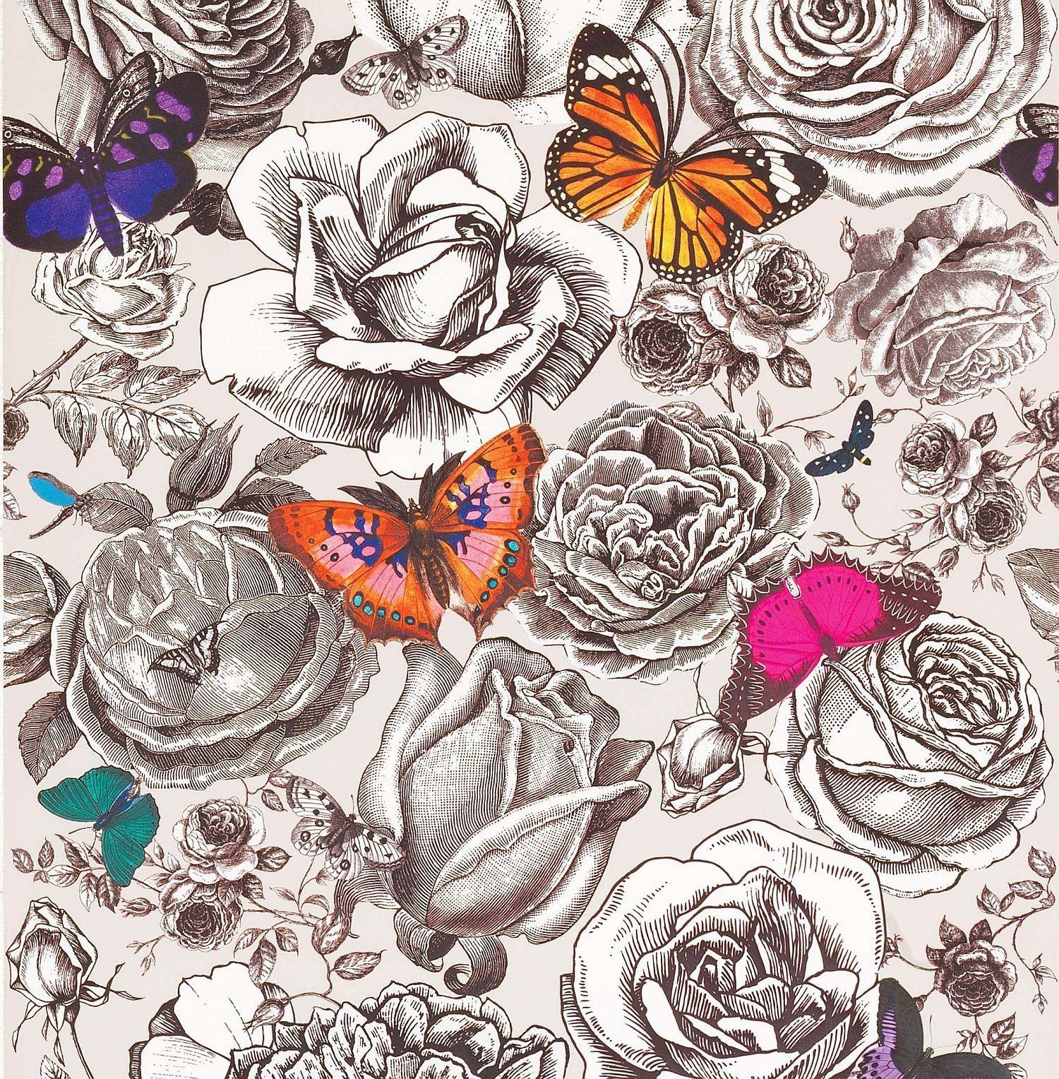Butterfly Garden Review