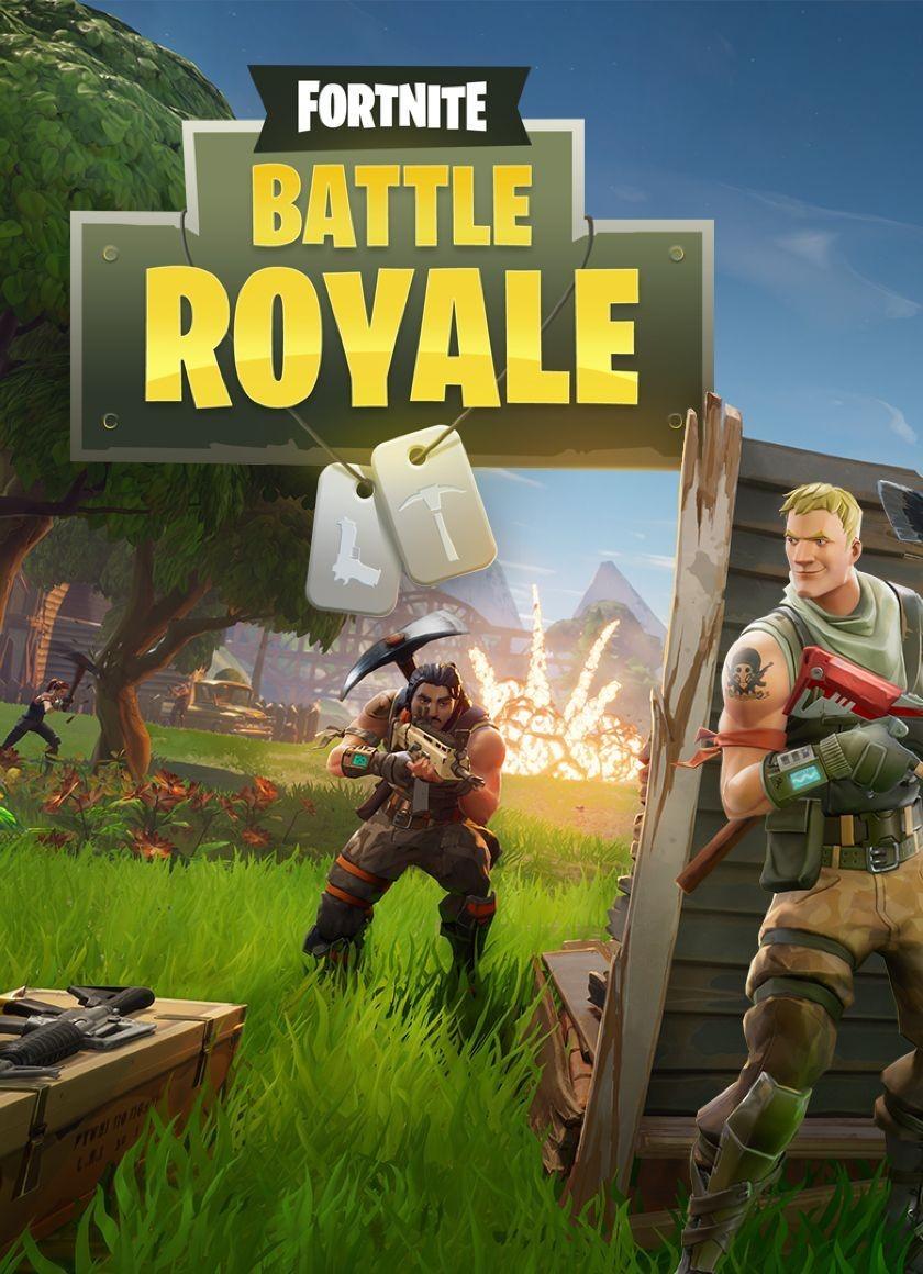 Fortnite Battle Royale Photo