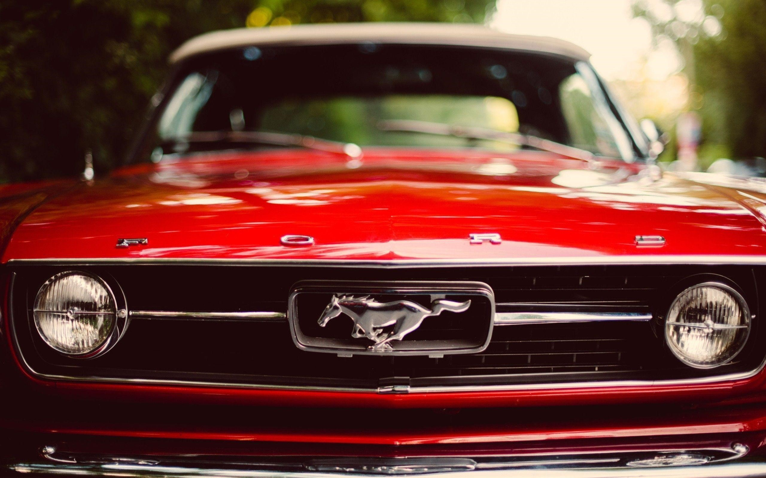 Mustang Background