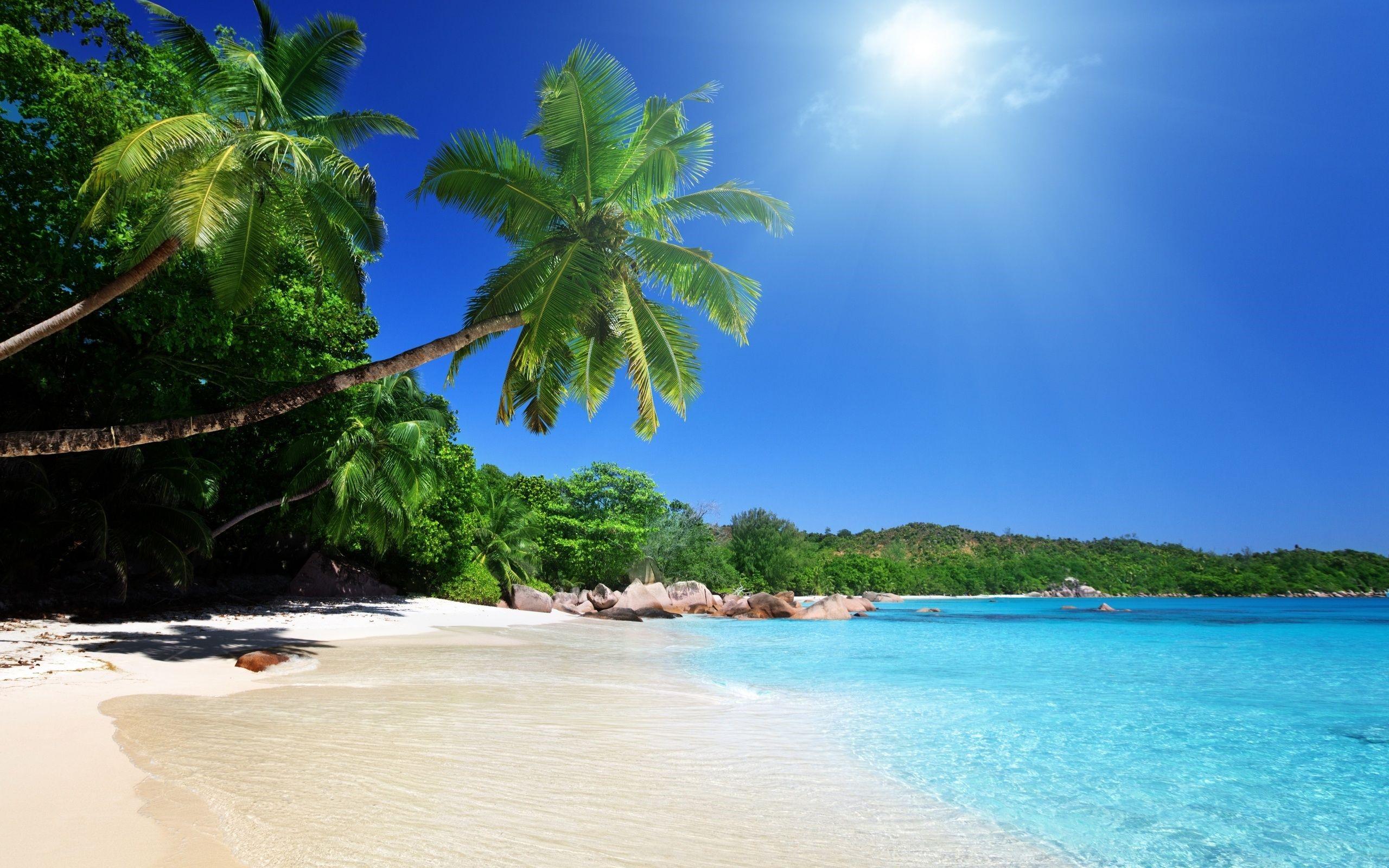 Tropical Beach Landscape 1080p Wallpapers