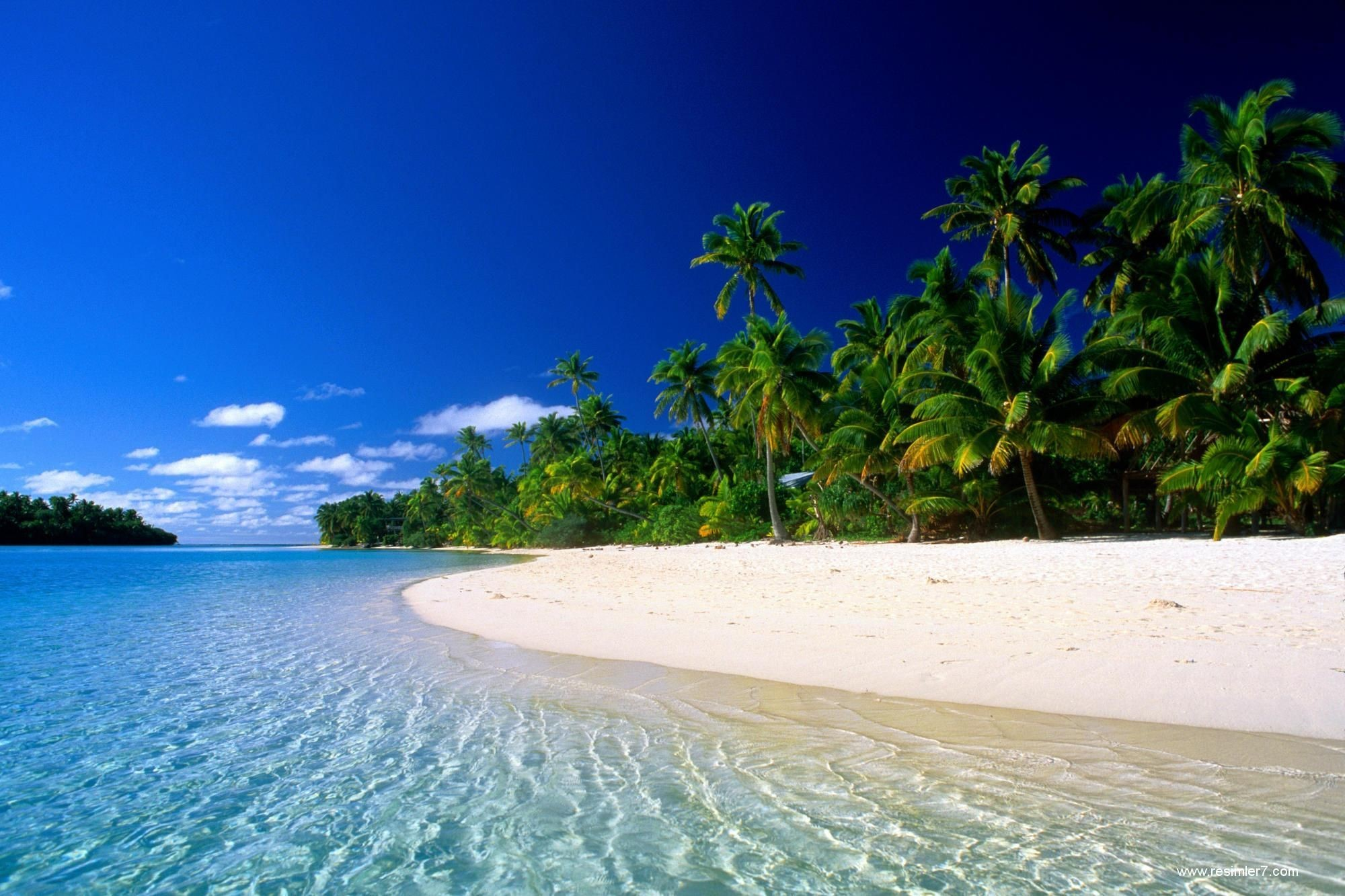 Tropical Beach Landscape Gallery