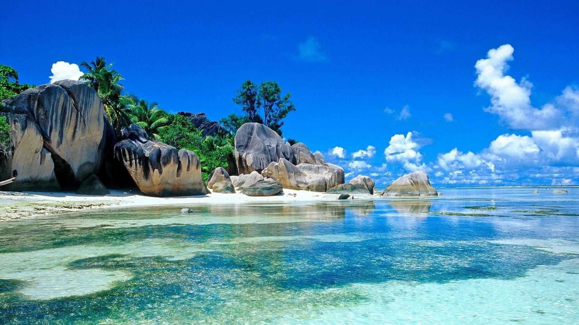 Tropical Beach Landscape Mobile HD Wallpaper