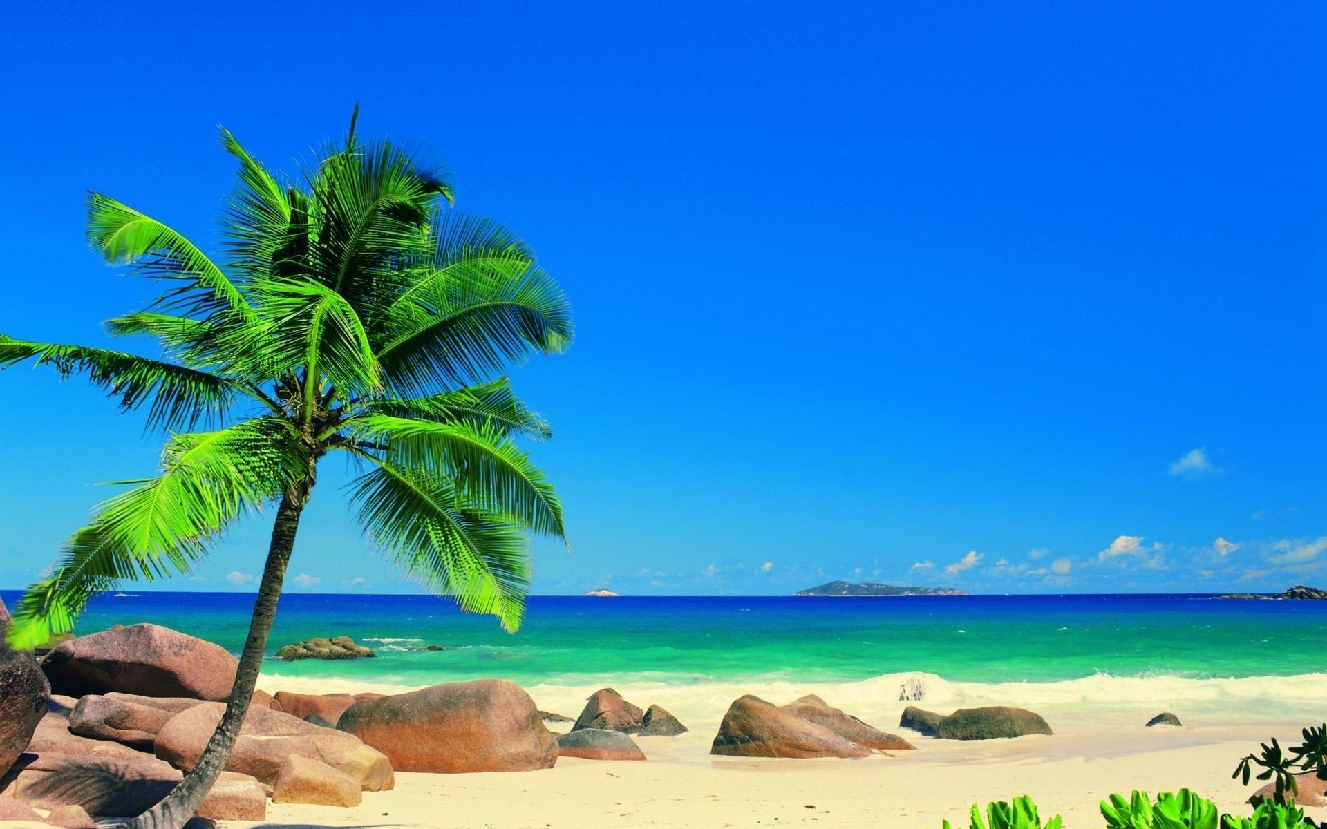 Tropical Beach Landscape Phone Wallpapers