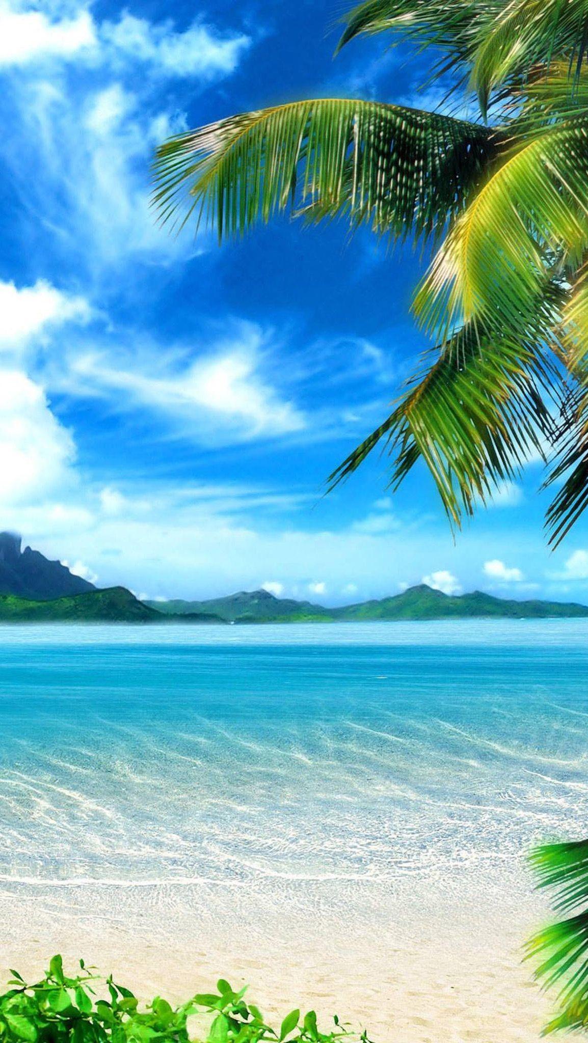 Tropical Beach Landscape Photos